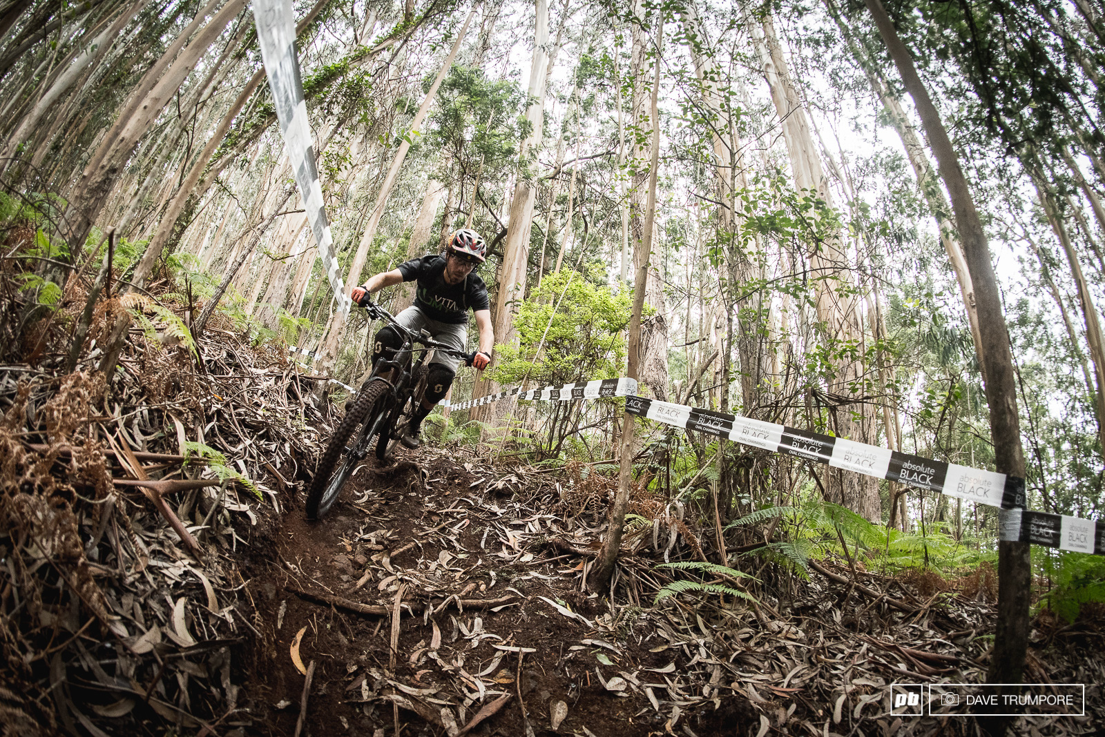 Stage 4 is a super flow natural affair through some big trees and loamy dirt.