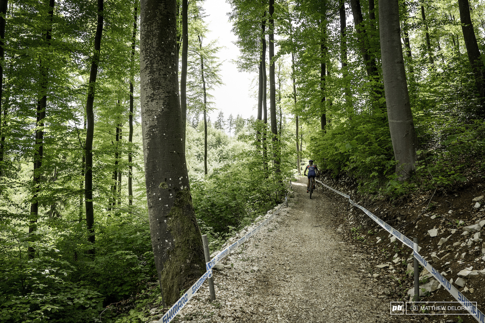 Nove Mesto has several shorter rough climbs. Albstadt has two long grinding climbs.
