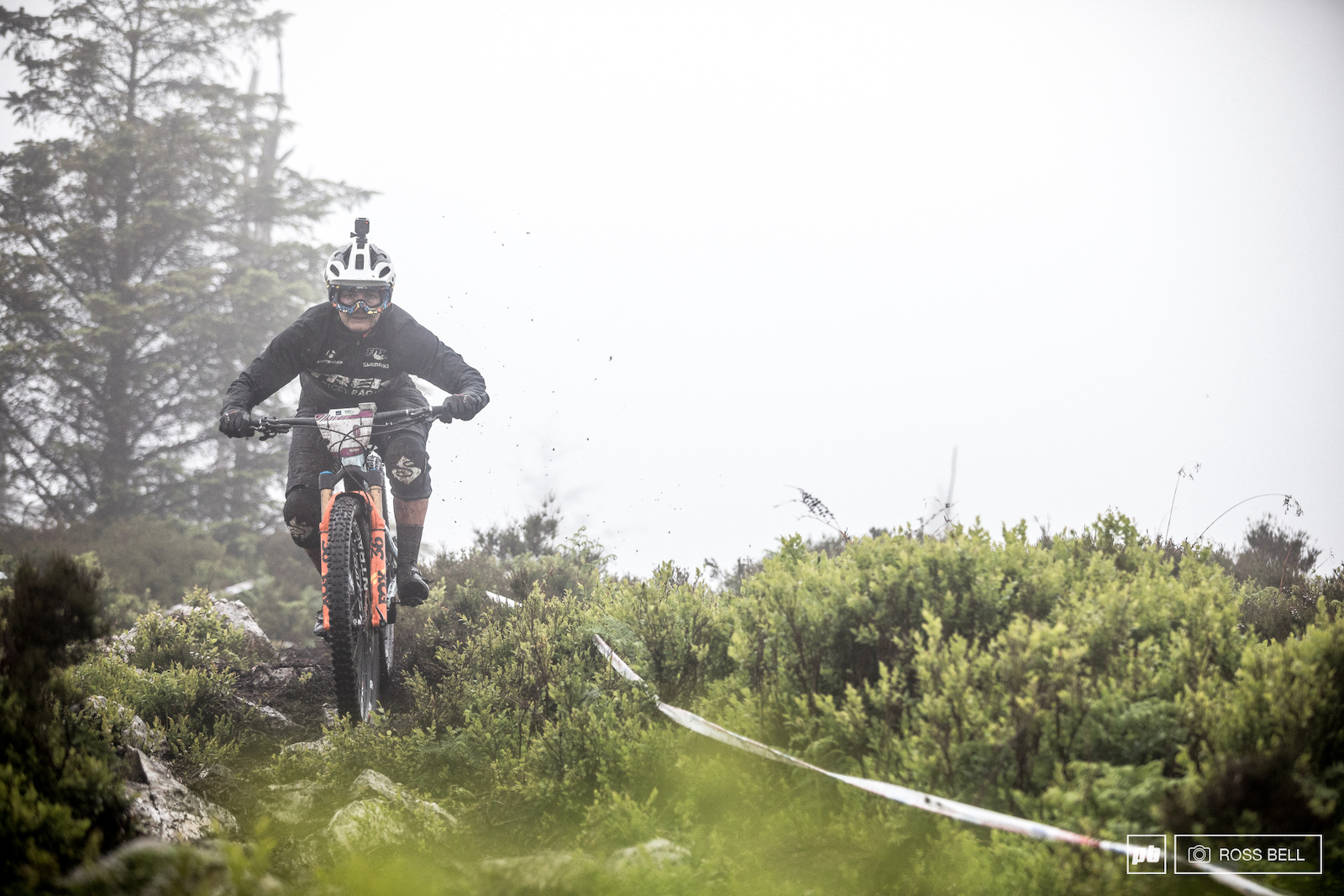 Katy will be loving the Scottish conditions and looked at home in the slop.