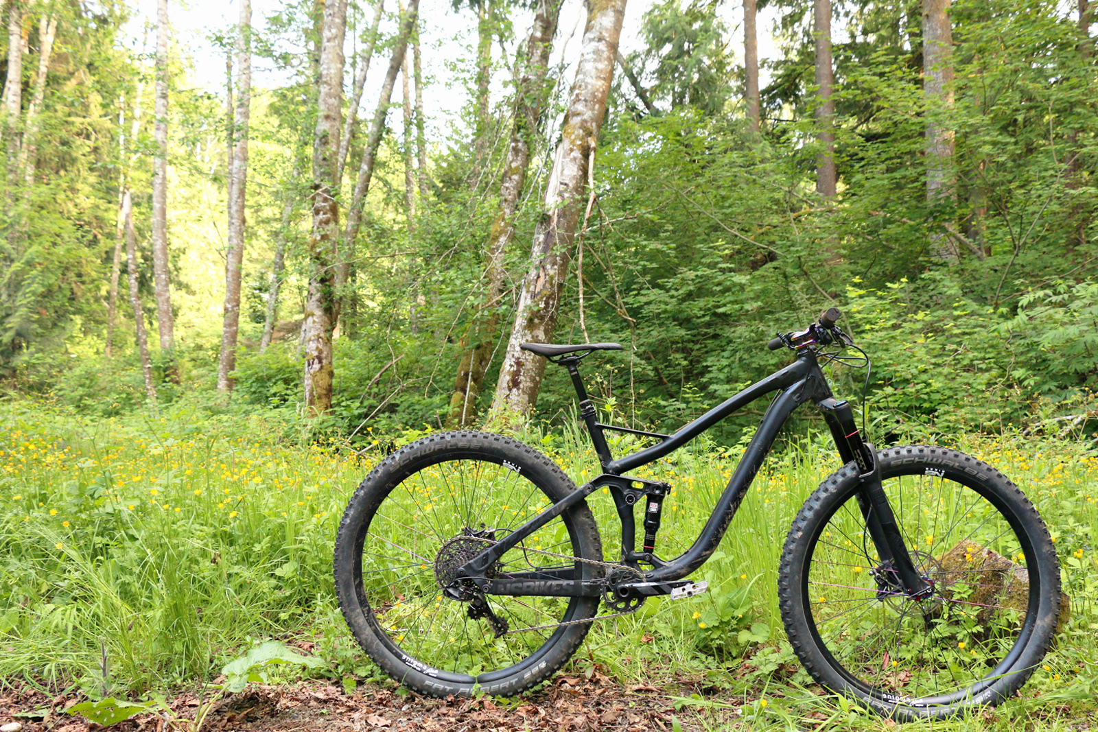 NS Snabb 29 Bike Review by Vernon Felton