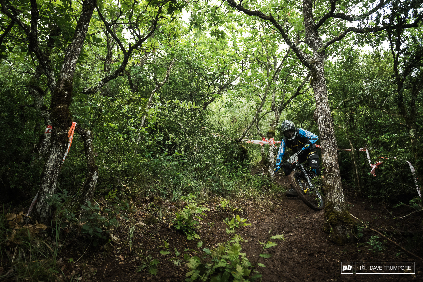 Sam hill can smell and inside line a mike away and had no trouble with this tree that caught out everyone but the local French riders.