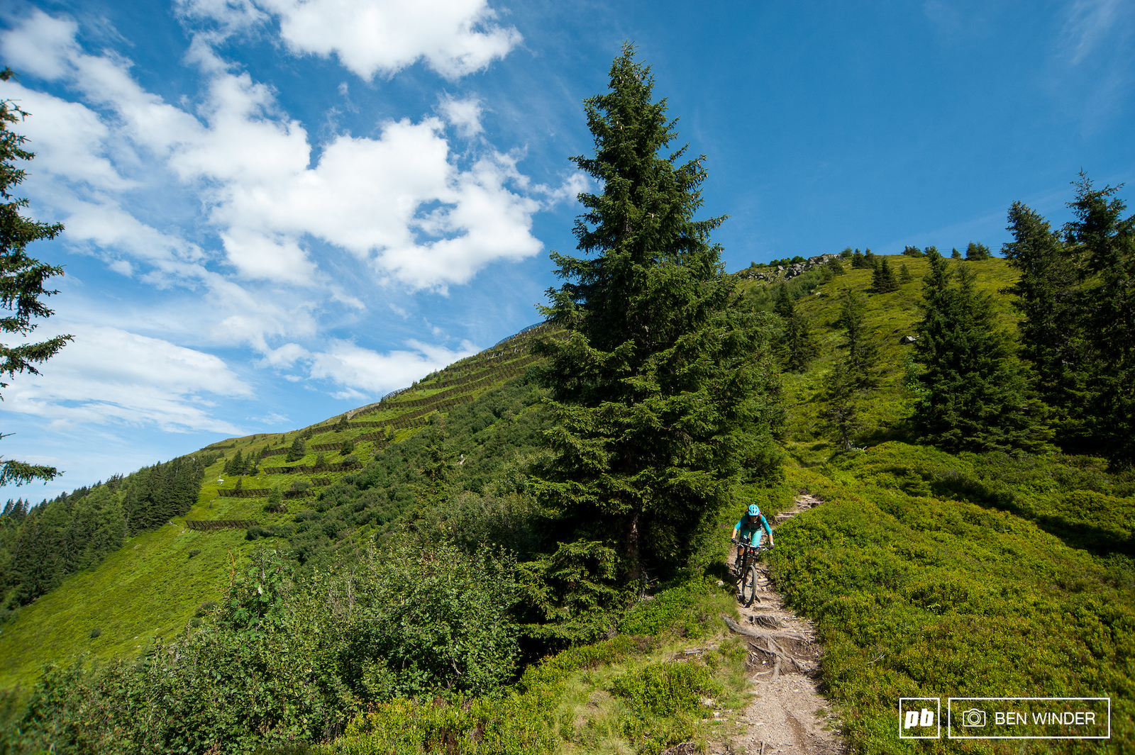 There s loads of marked singletracks which are technical fun and flowy. A lot of them are modified walking tracks.