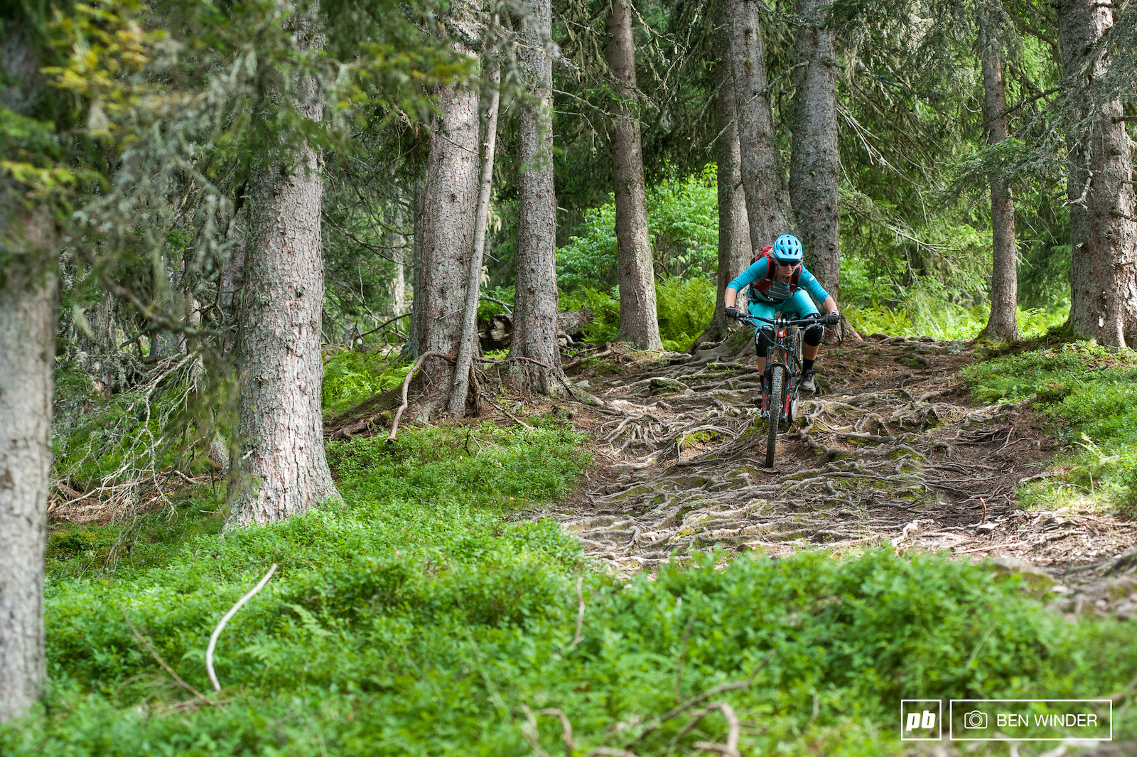 Some of the best singletracks I ve ever ridden they re well used and yet still have support and exciting sections.