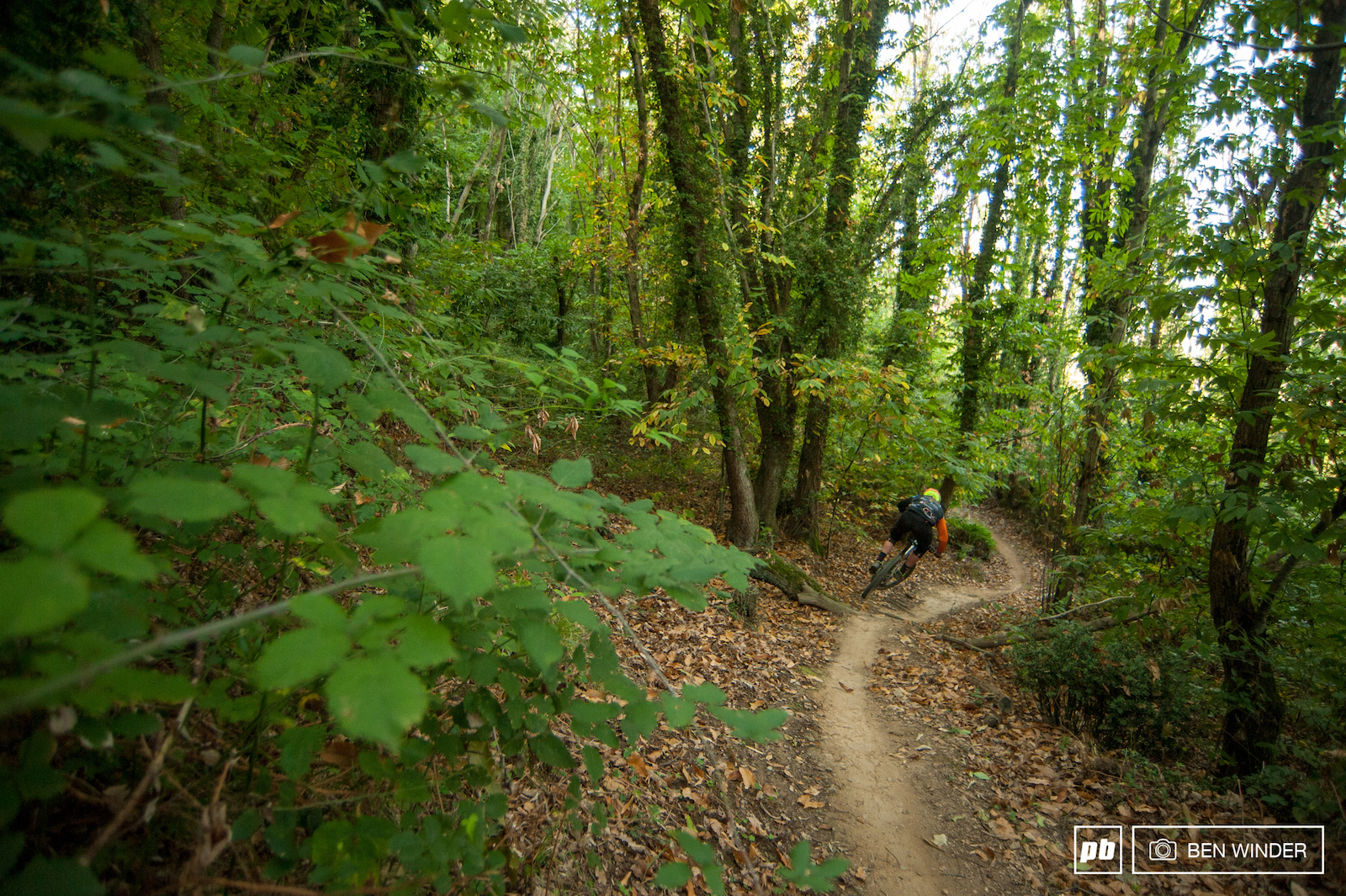 In the sections of trail that don t require as much breaking the dirt is perfect. Singletrack that dreams are made of.