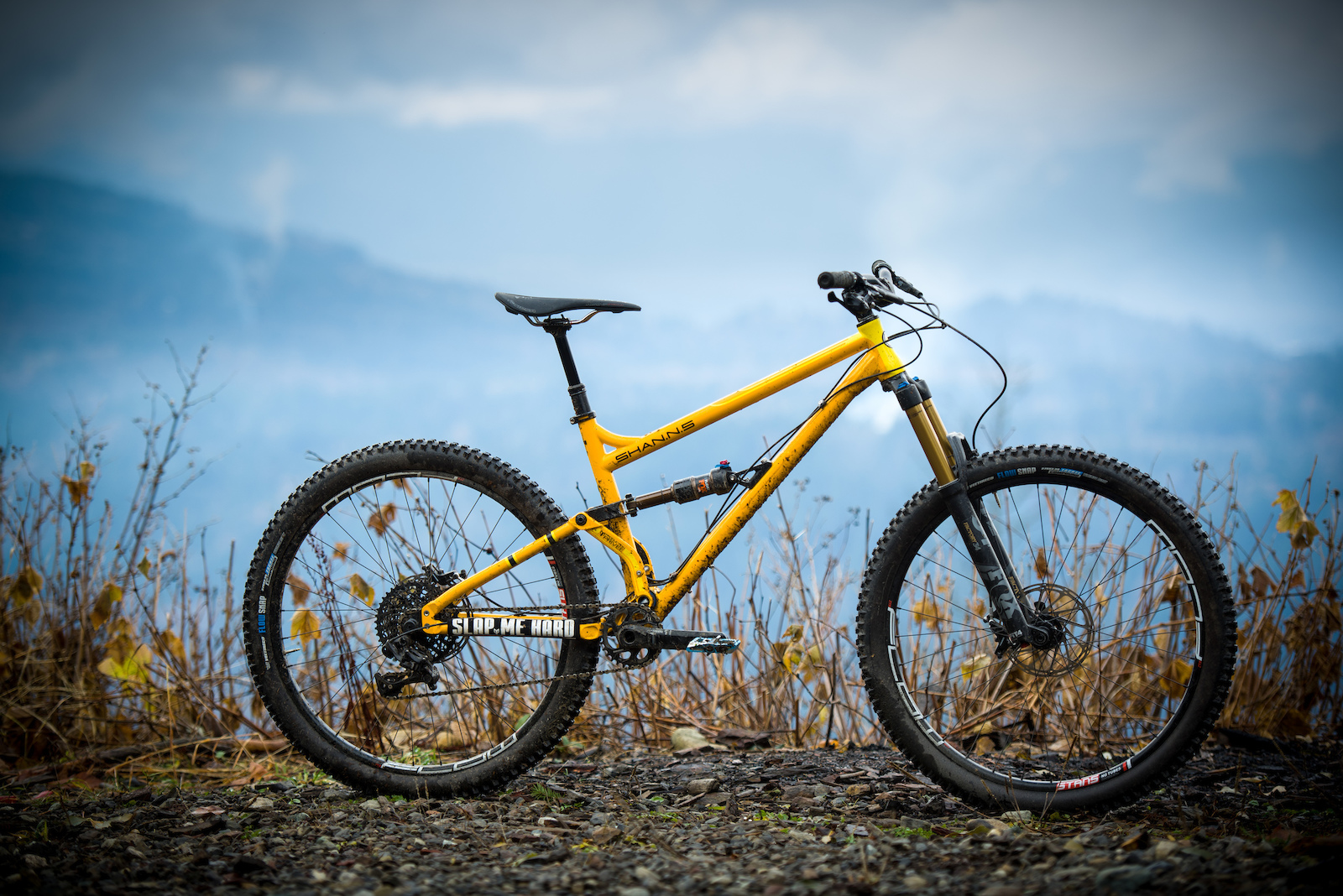 326d34a94e2 Production Privée's Steel-Framed Shan N°5 - Review - Pinkbike