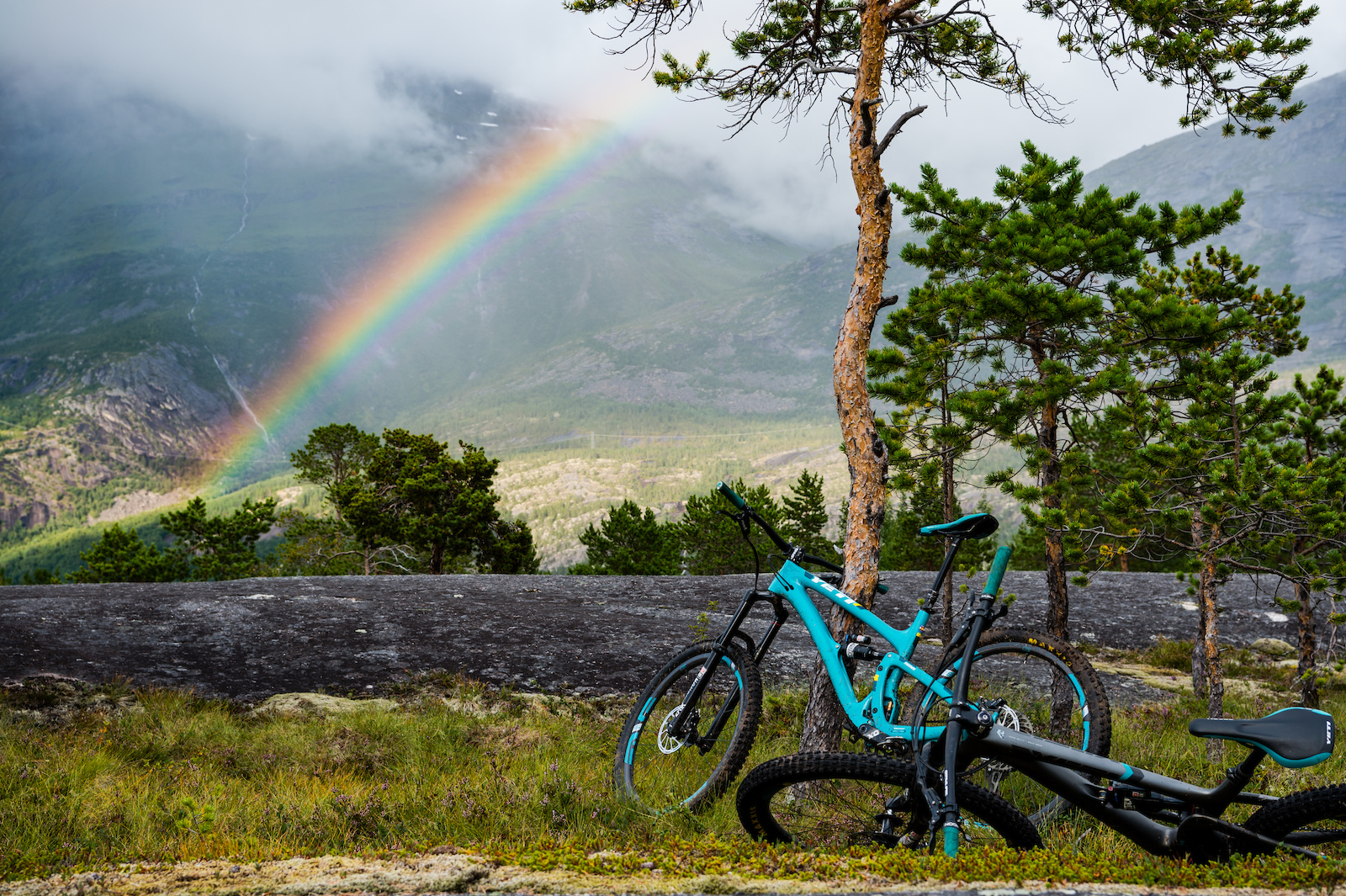 Skjomen Reinnesfjellet Norway.
