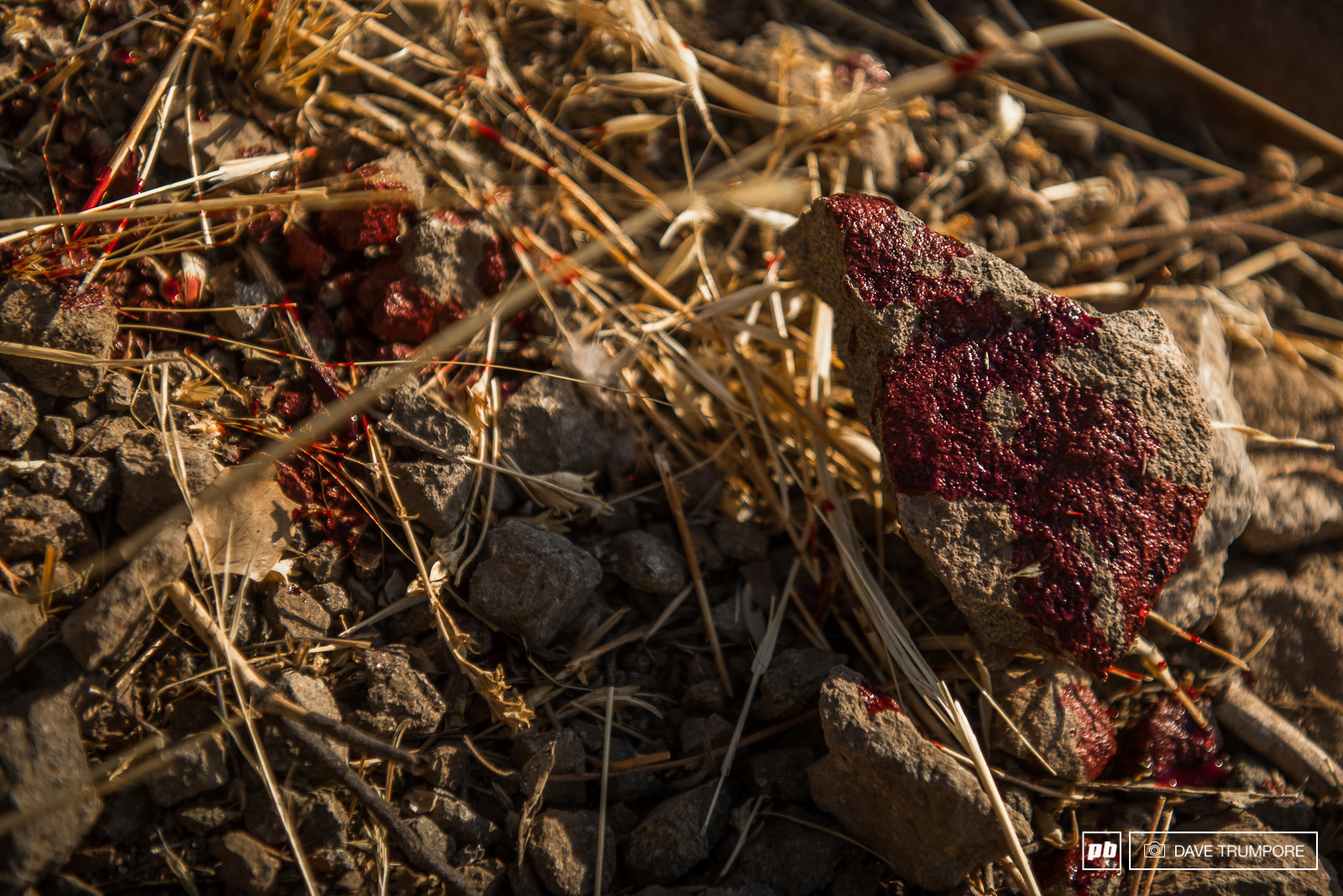 More than a few riders left their blood on the rocks of the Andes.