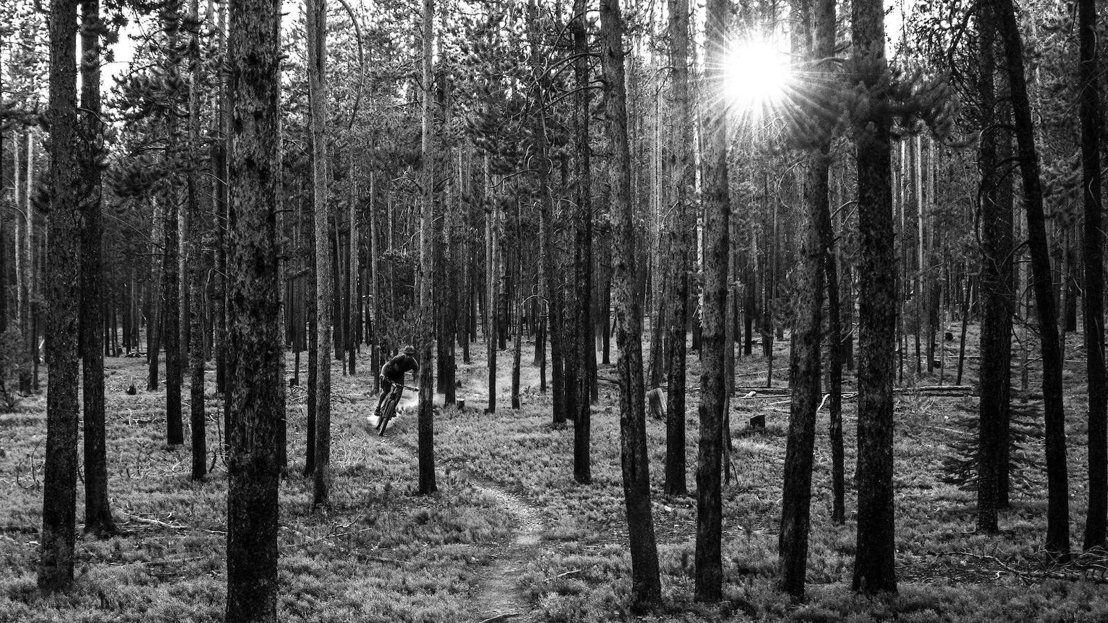 The Fun-Suffer Divide: Bikepacking the Continental Divide Trail - Video - Pinkbike