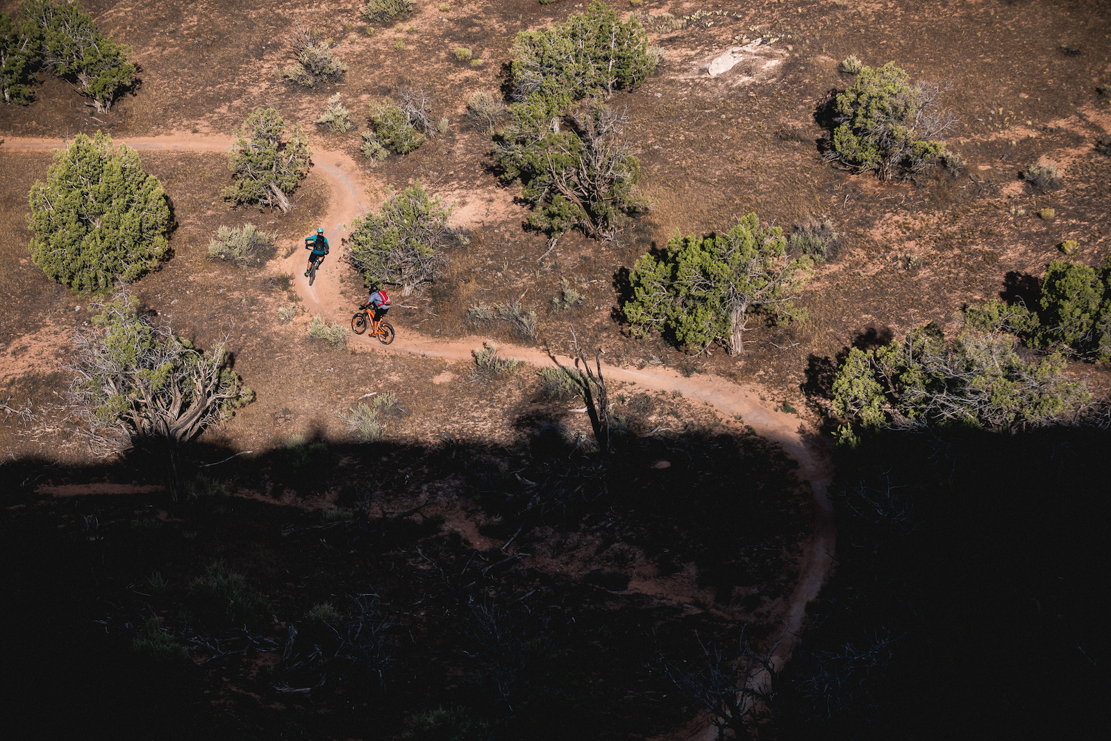 A Journey Through Colorado s Trail Diversity - Alpine meadows to red desert