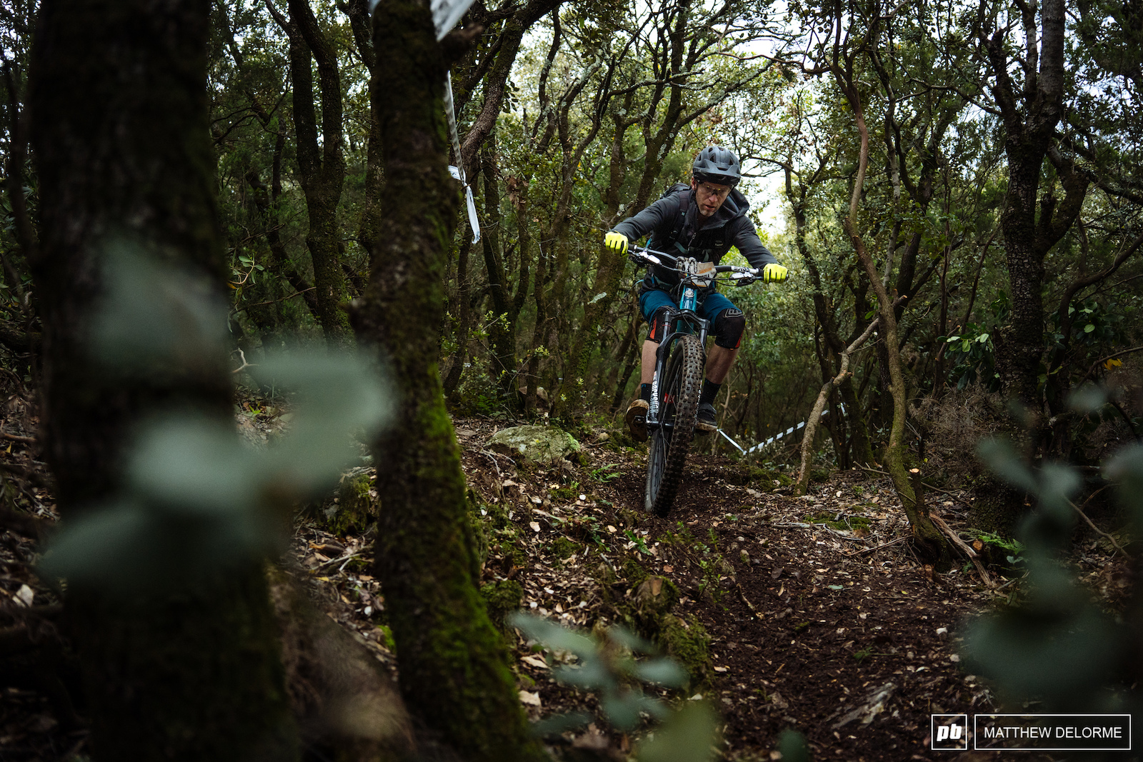 There is some nice loamy fresh sections out there.