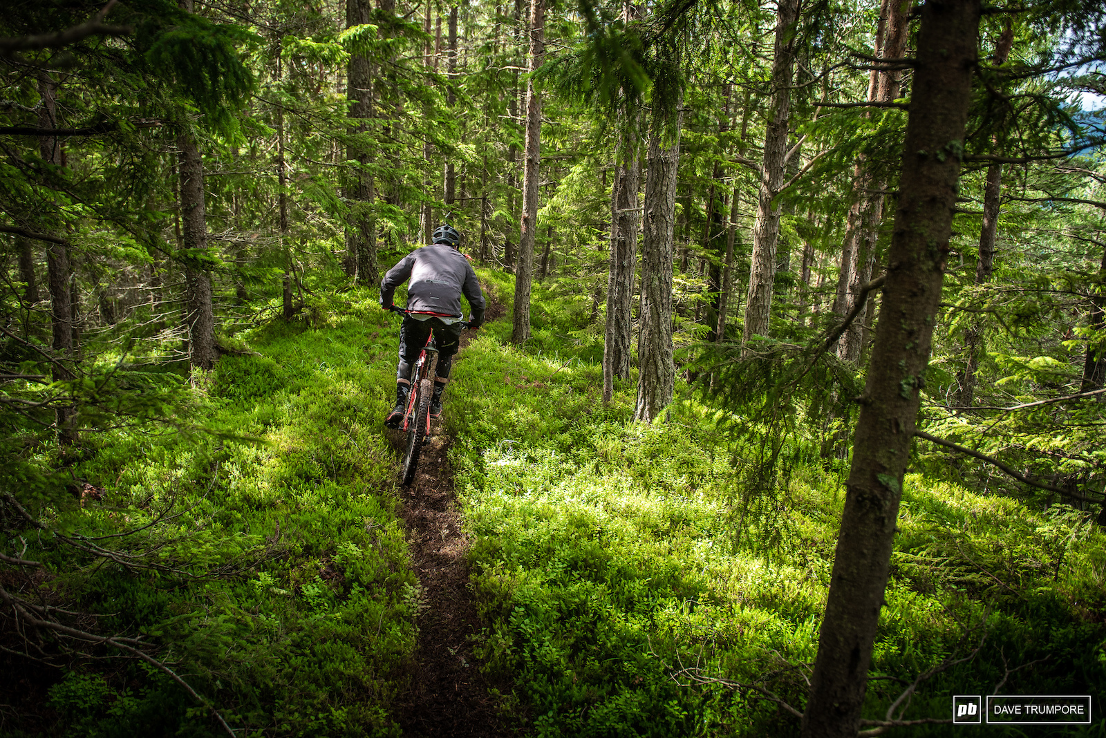 A narrow steep and fresh cut loamy ridgeline makes up the top of Stage 4.