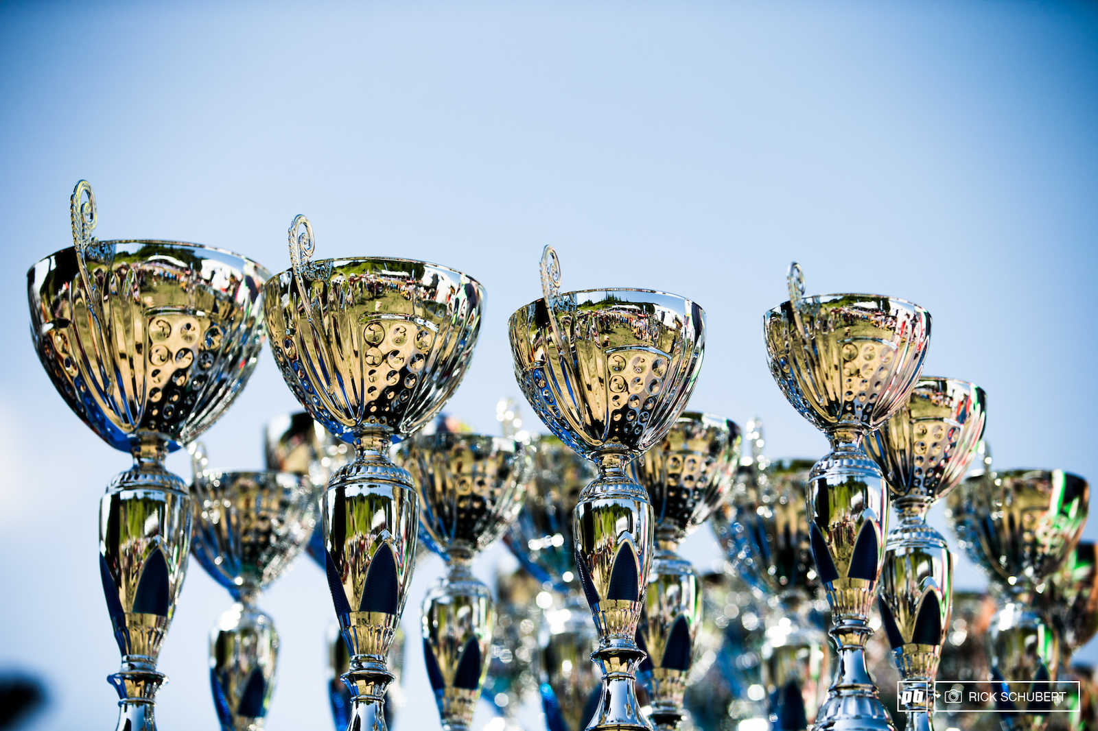 Shiny trophys for the winners
