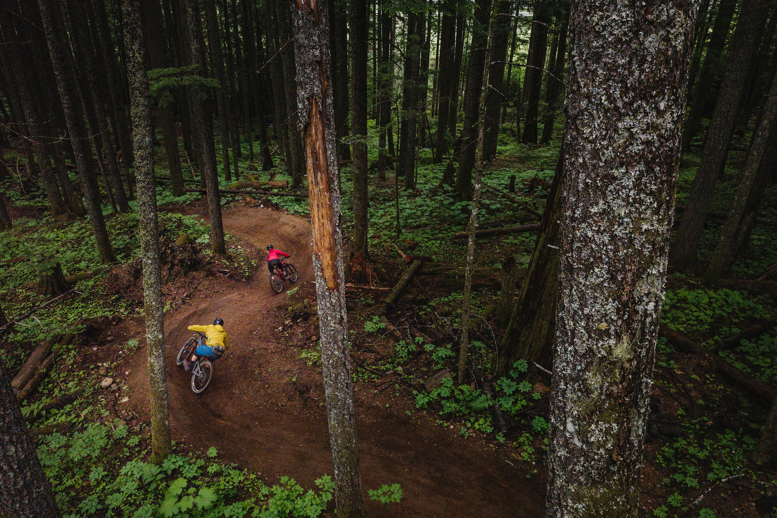 Doing laps with friends is what It s all about. Trails made for every skill level can be enjoyed by all riders.