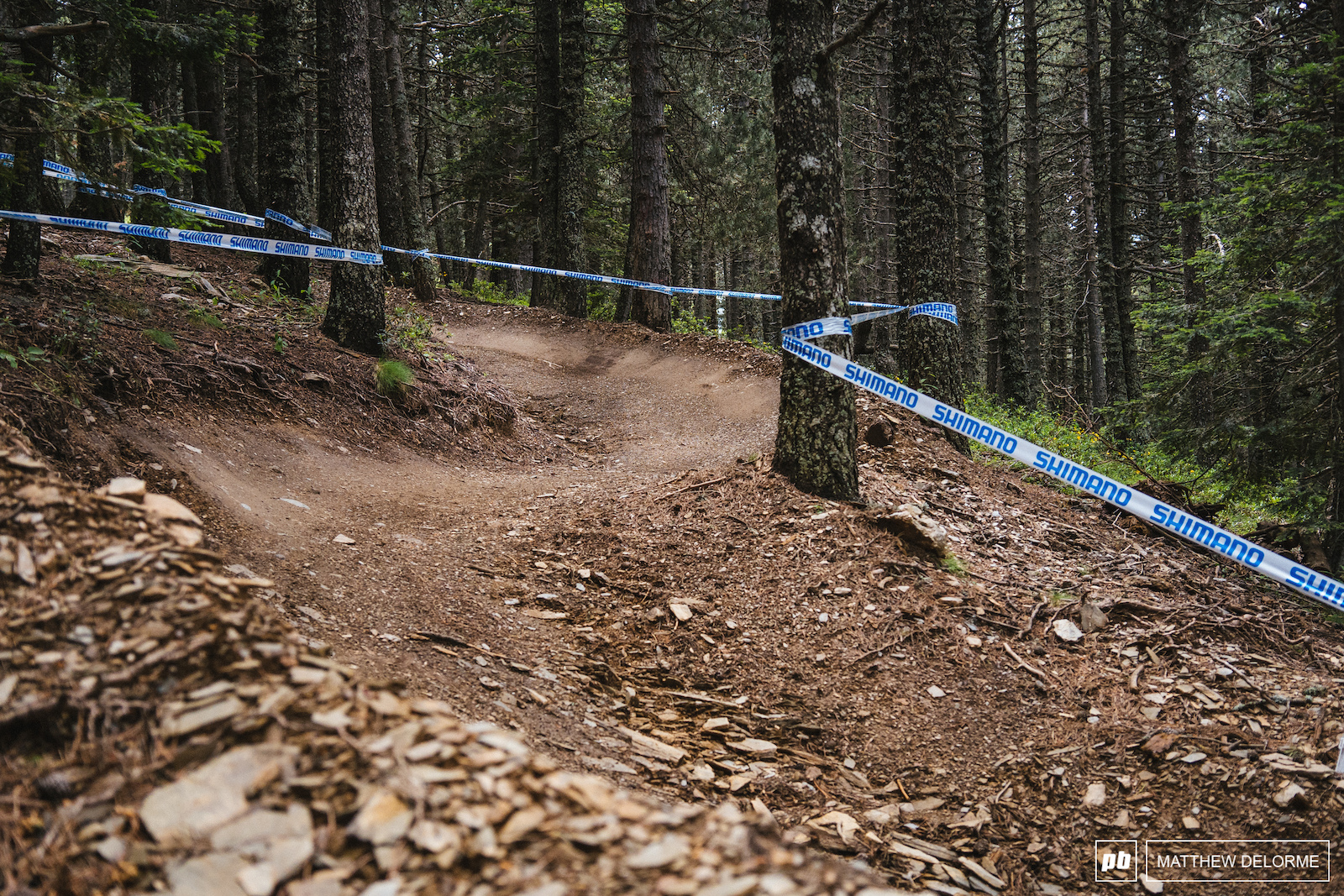 Flow trail. This may be the most well rounded XC course to date.