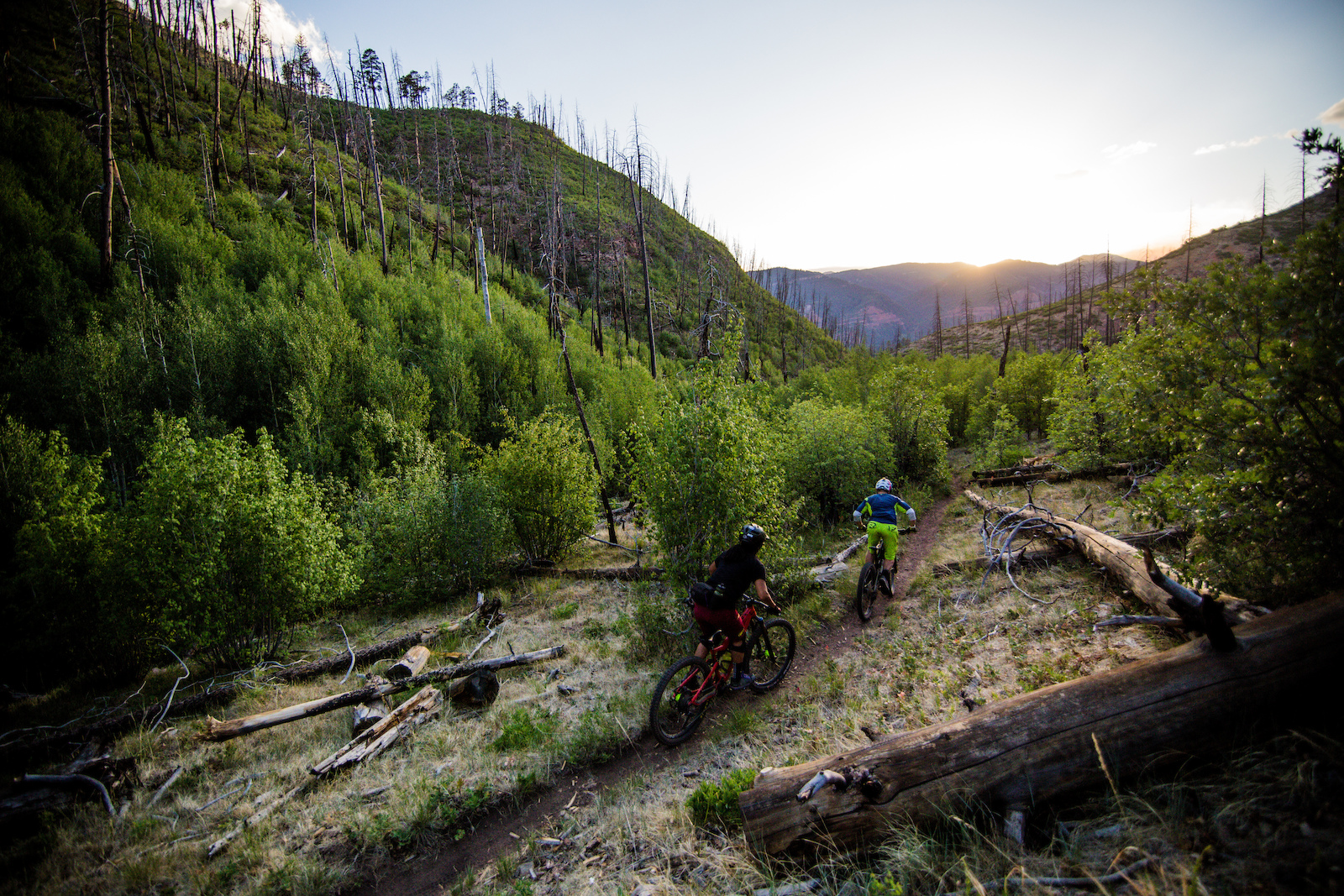If you re in Durango and like going down hills you need to ride Haflin. This was the last bit of trail in an old burn zone before it changed to the Sedona-style of riding.