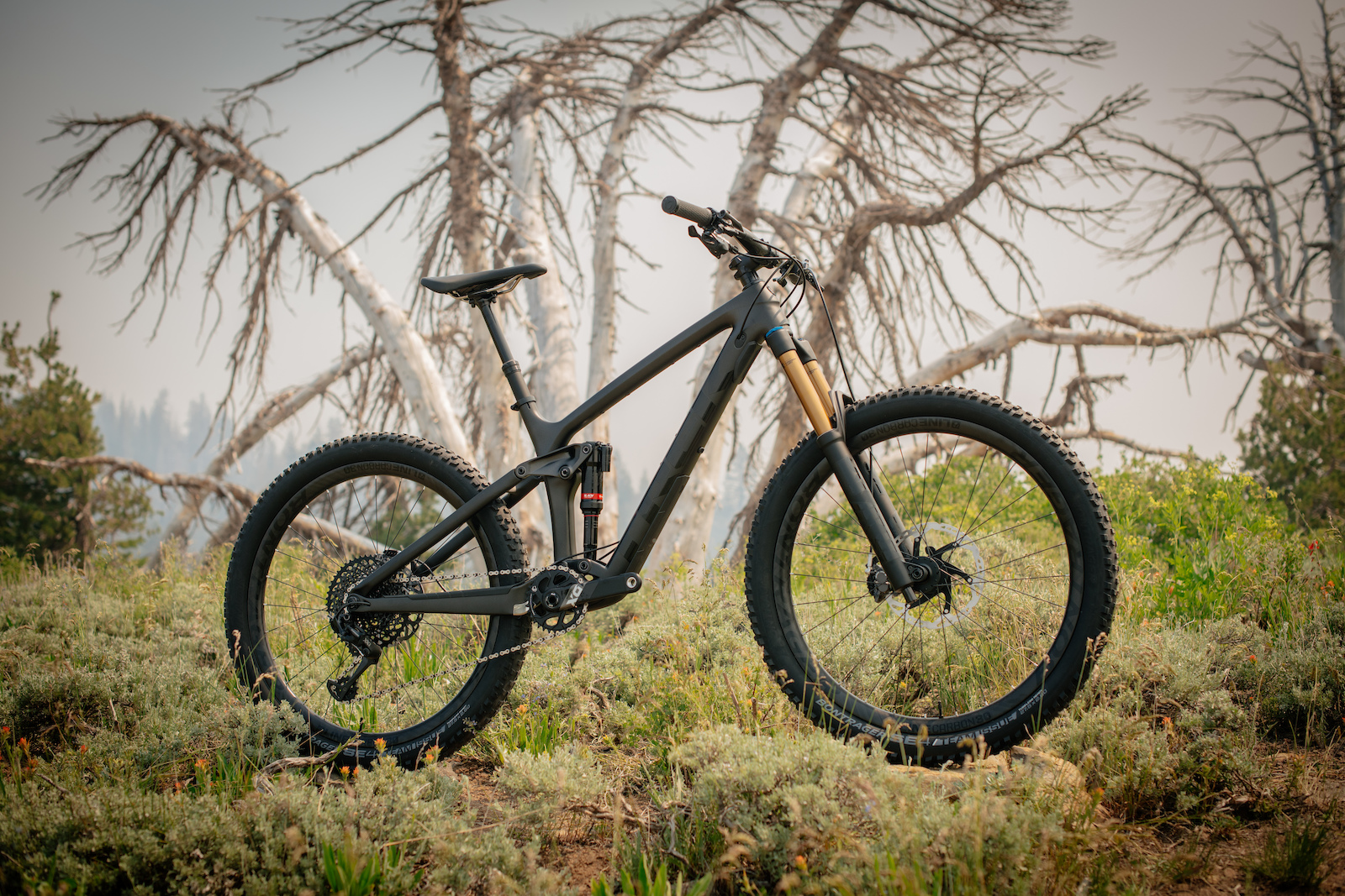 47db37382d4 First Look: Trek's New 2019 Remedy - Pinkbike