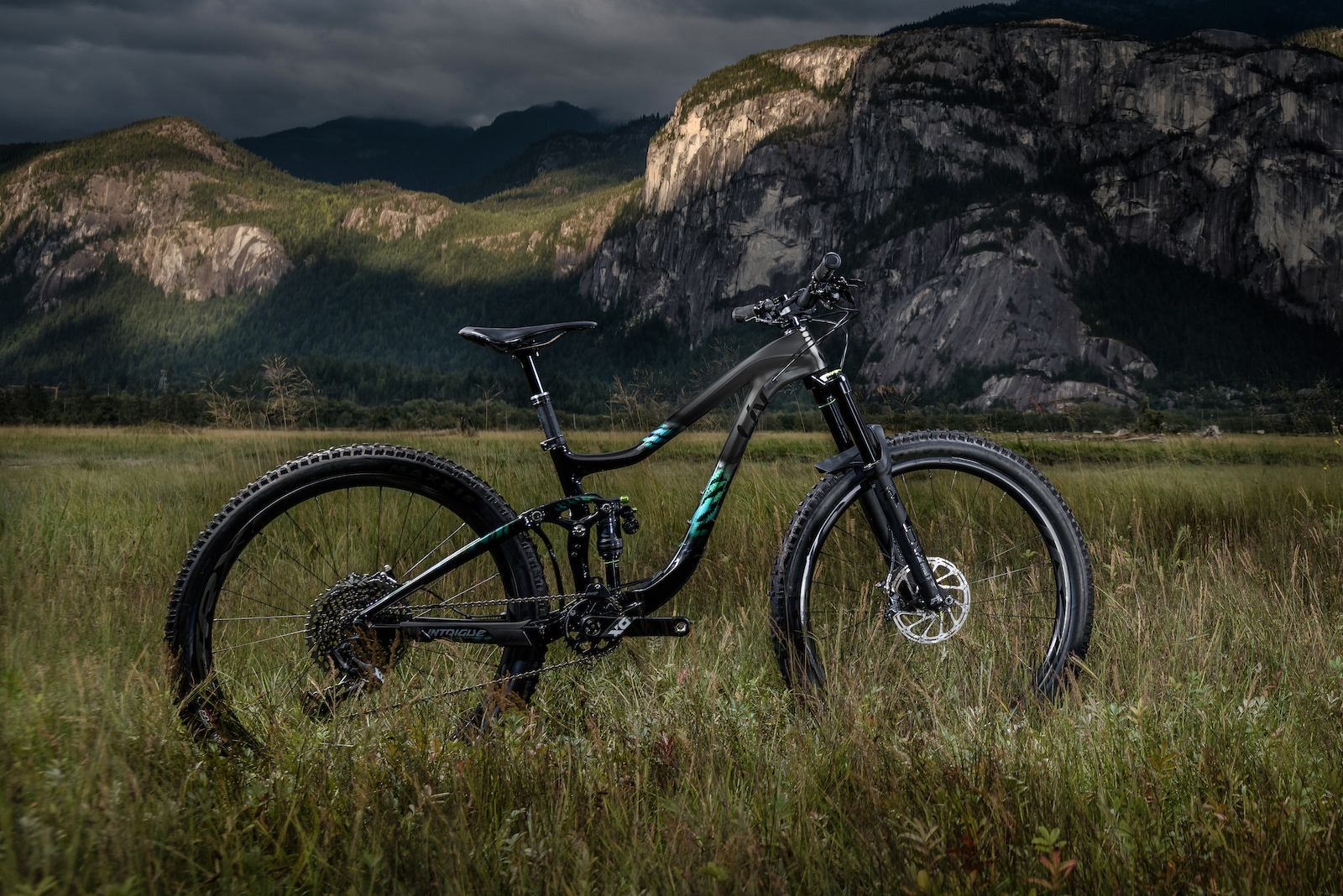 d07df42d8c5 First Look: 2019 Liv Intrigue Advanced - Pinkbike
