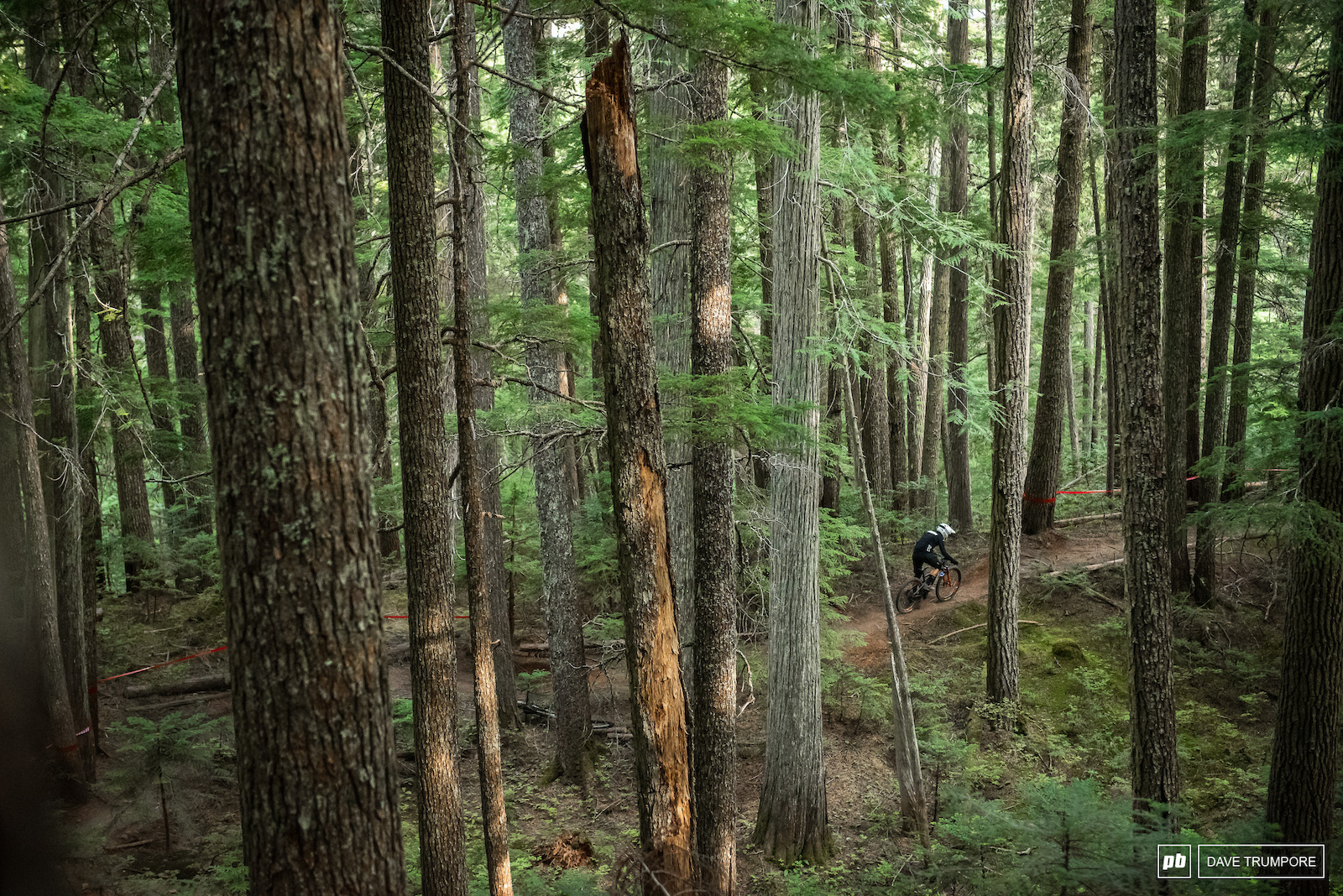 Stages 1 and 2 make their way down some classic trails through the woods on Blackcomb.