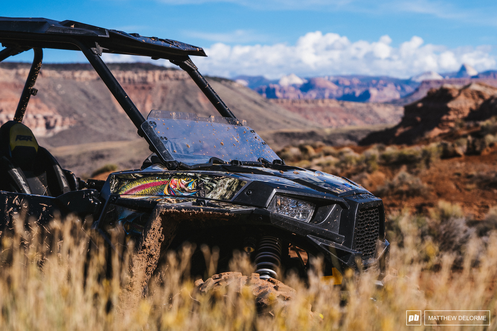 Best RZR out there belongs to Aggy.