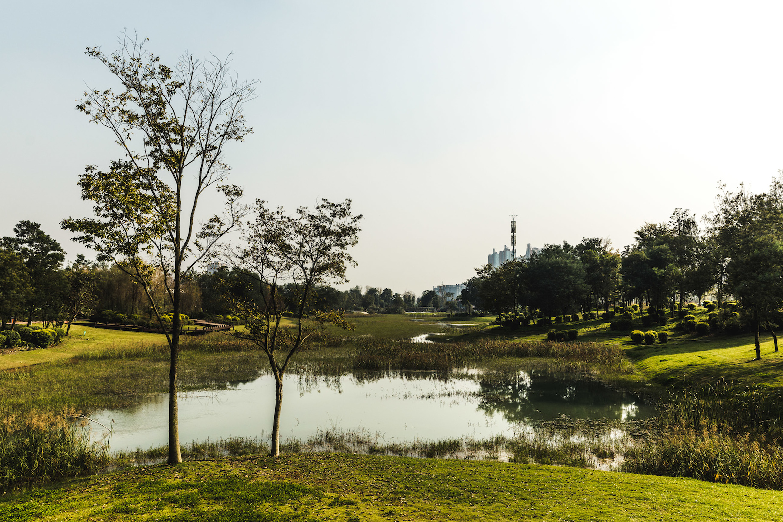 The idyllic Qingshuihe Park plays host to this years event.