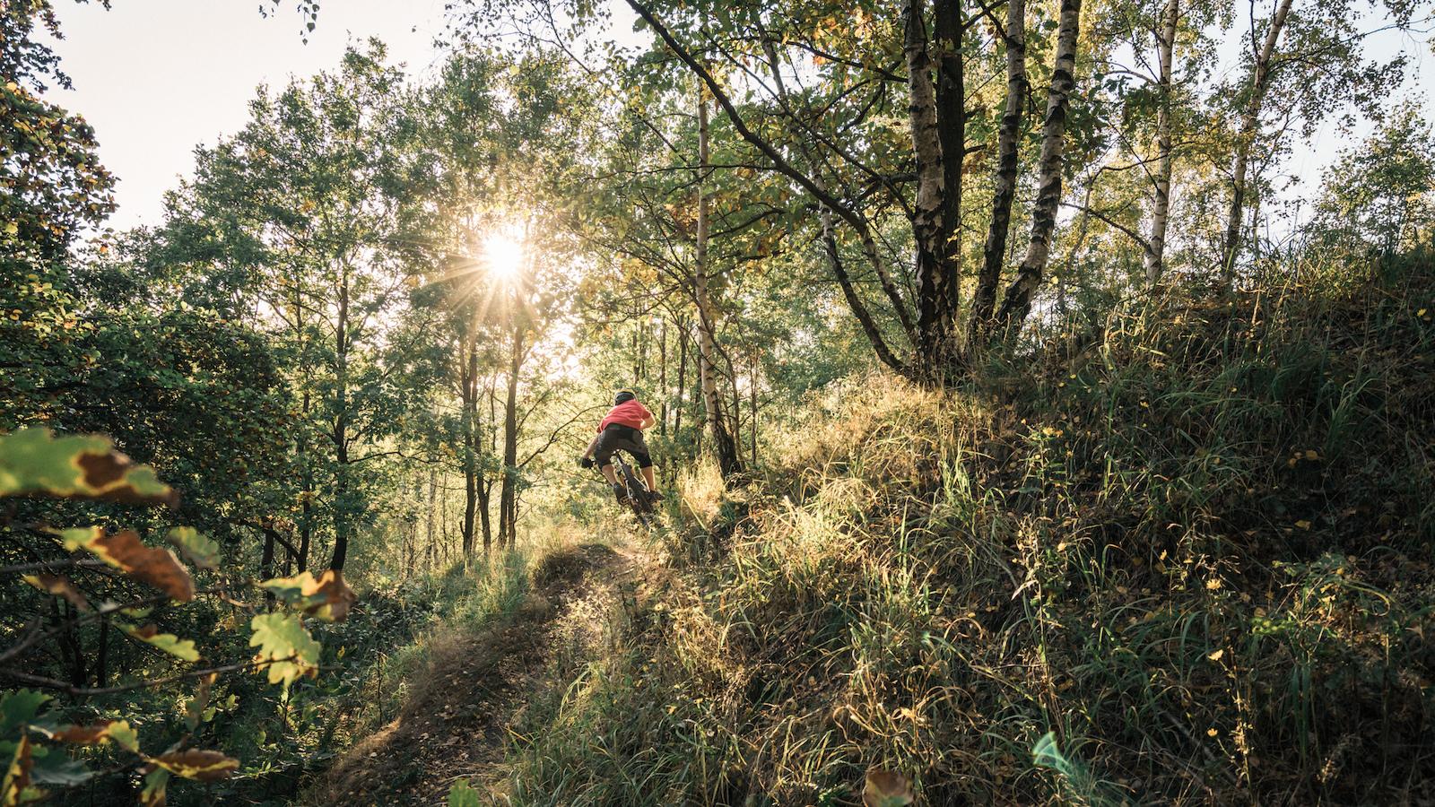 Enduro riding in golden light