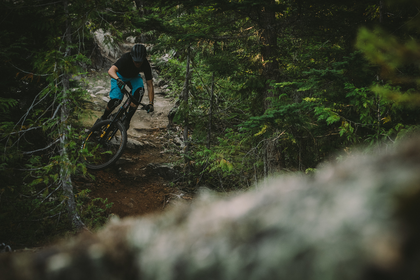 Dylan Forbes rides the Instinct A50 BC Edition in Whistler.