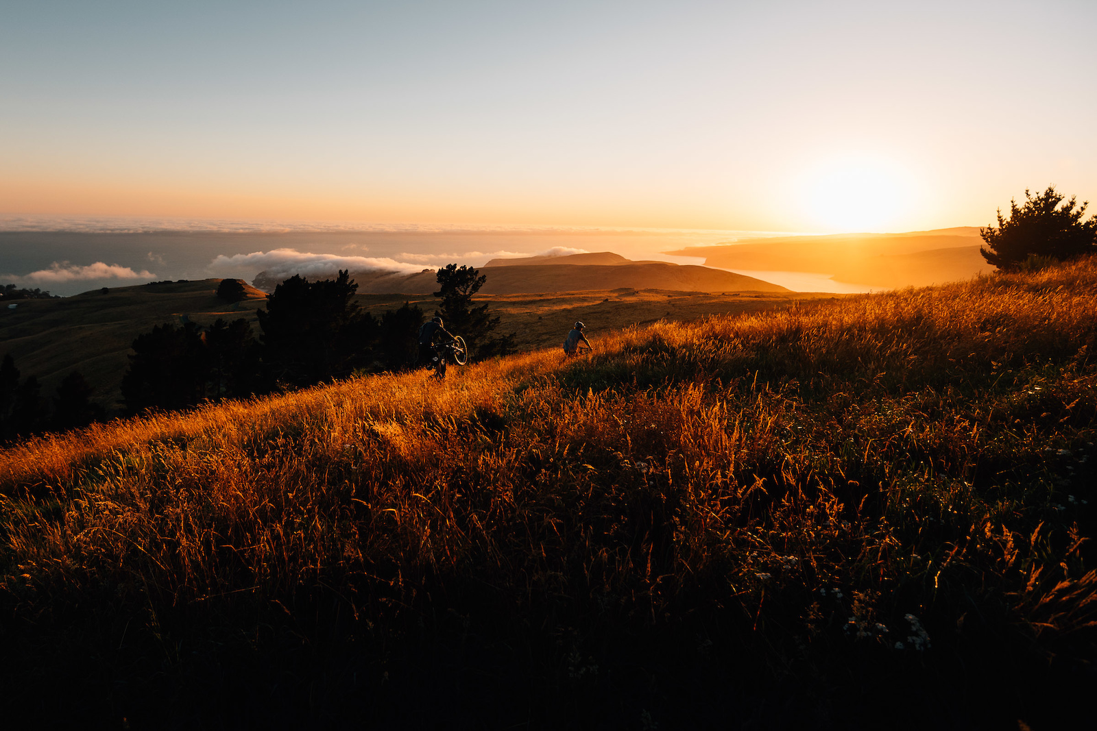 Riding into the rising sun towards Godley Head.