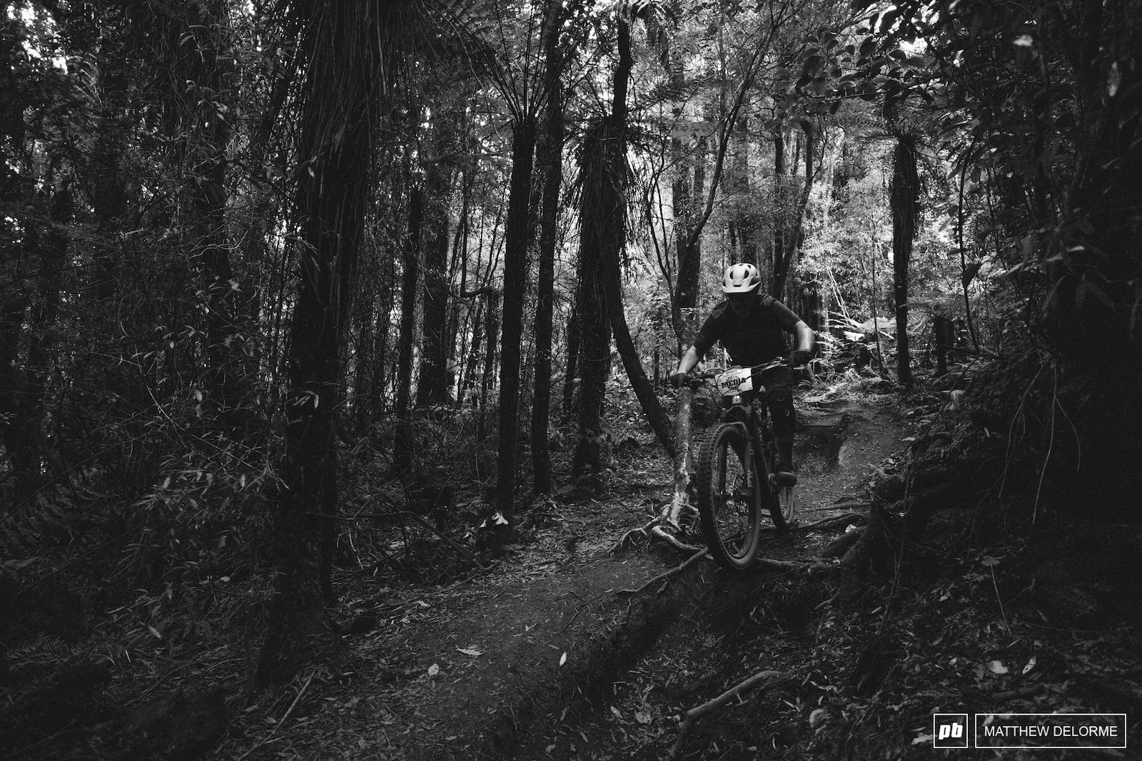 The woods are dark the roots are big and the tracks are mint. Round one will be a real treat.