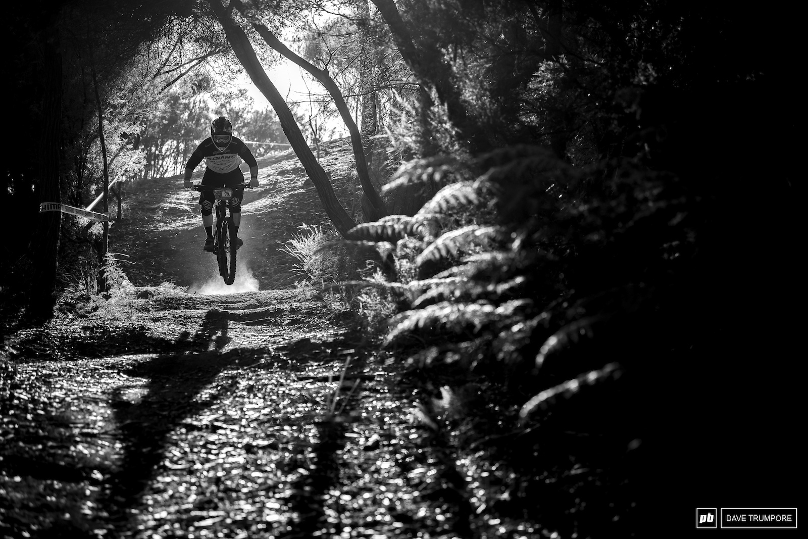 Into the forest to kick things off on Stage 2.