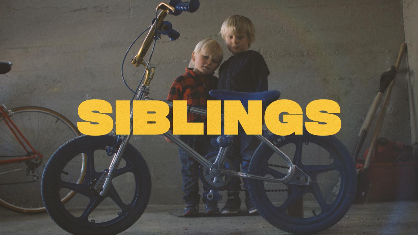 DB- Siblings