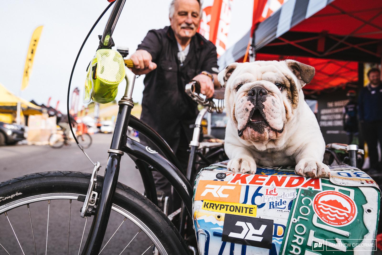 Meet Hank. Hank likes bikes.
