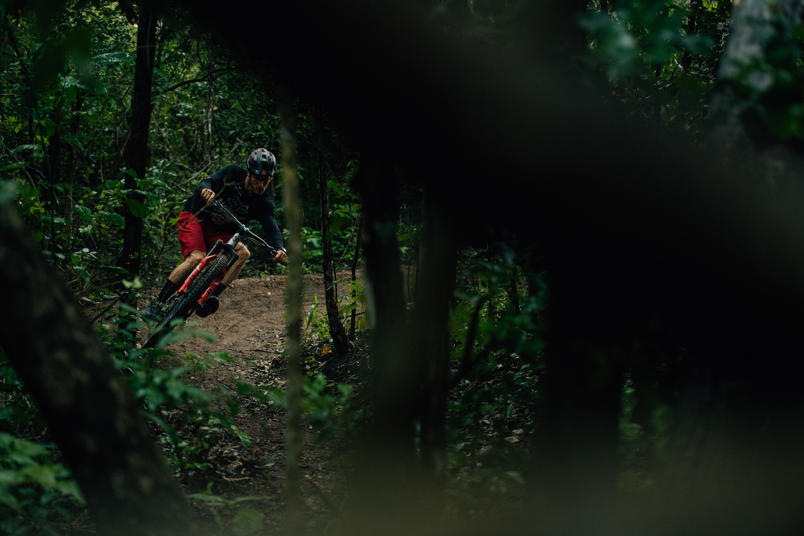 Bas rips through the forest like he was on rails.