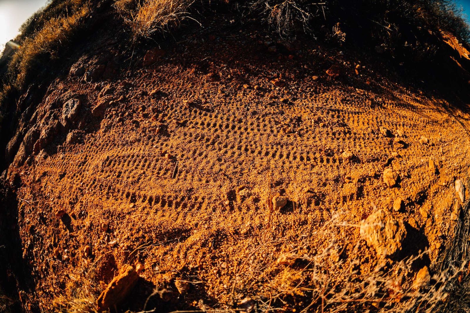 Trail surface of the desert reliably loose.