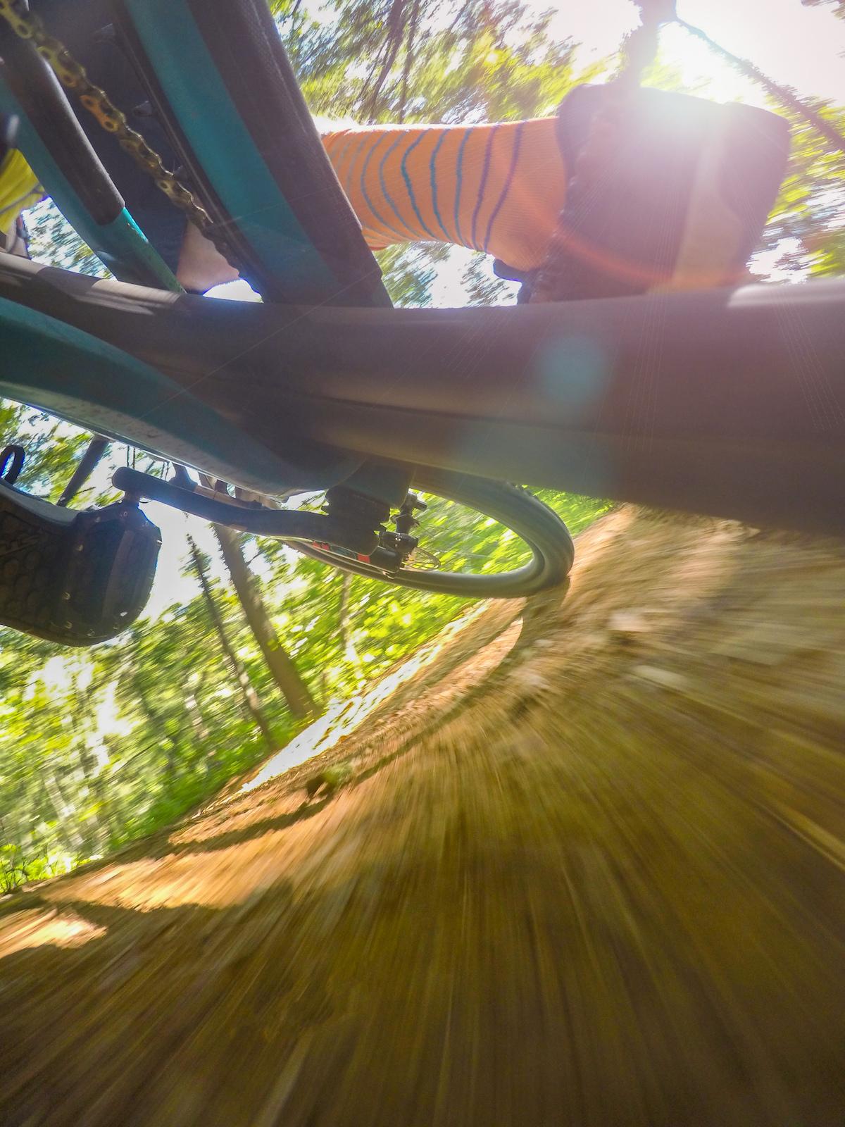 Finding the motion in a logarithmic spiral. www.kelleyhale.com kelleyhalephoto