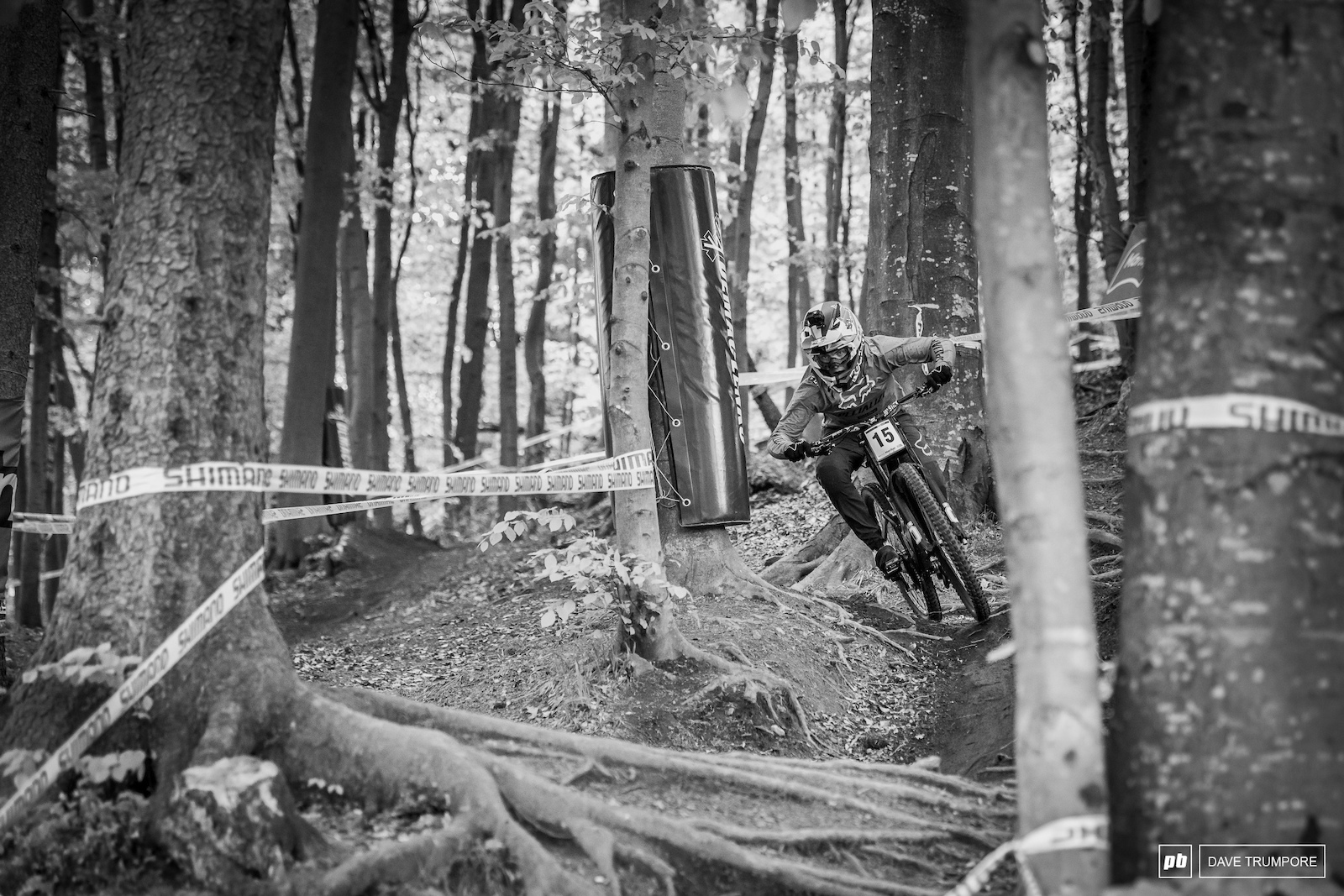 Finn Iles battling it out with the roots in the first section of woods