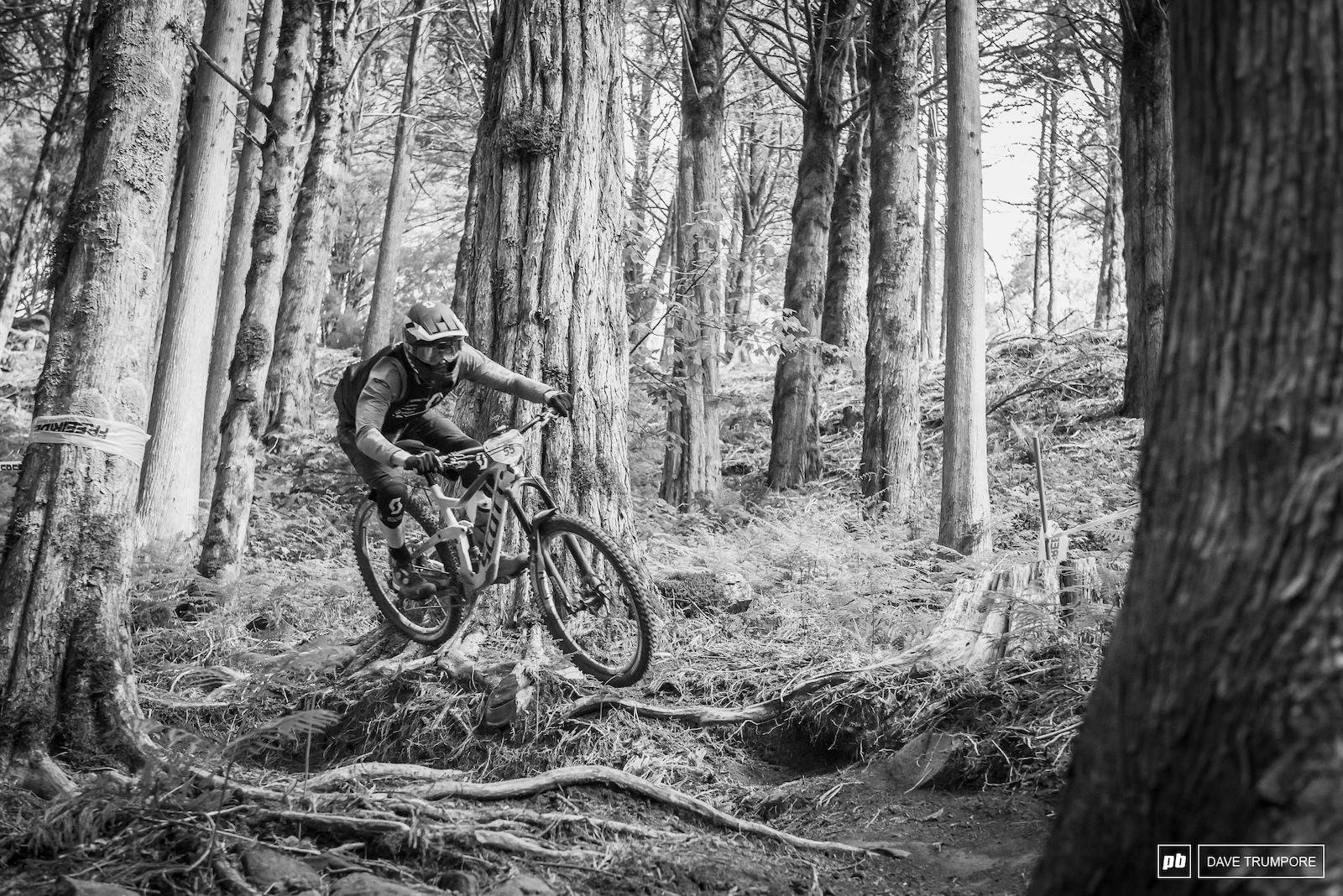 Things get rutted and rooty ion the woods on stage 6