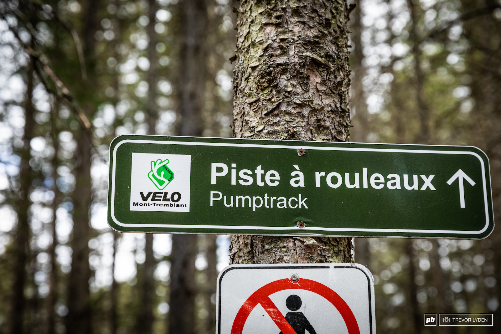 Velo Mont Tremblant has been a key part in revamping the local trail system.