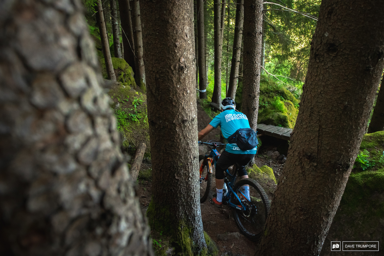 Niklas Wallner squeezes through the tight trees at the bottom of Stage 1.