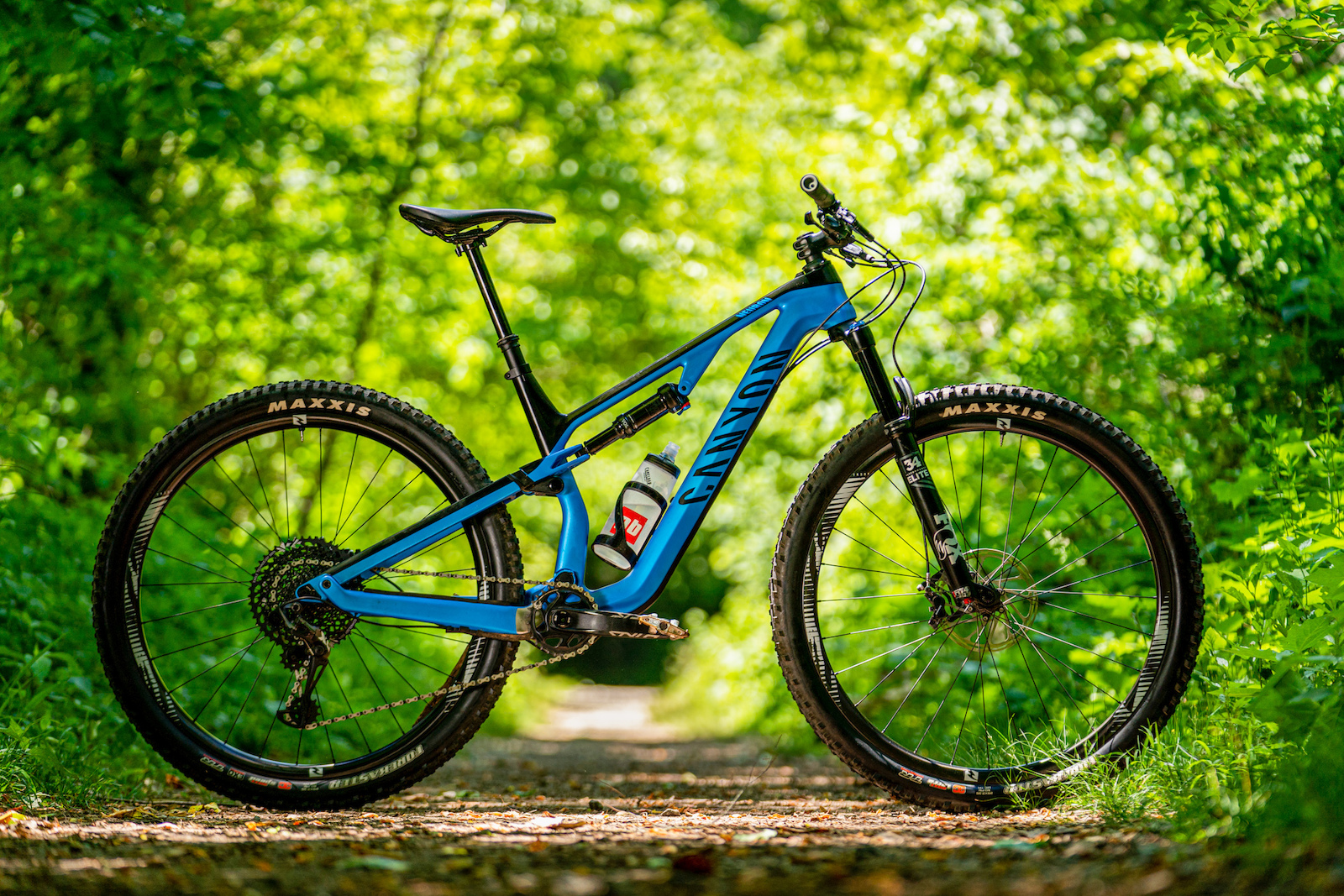 Daniel Sapp mountain bikes in Pisgah National Forest.