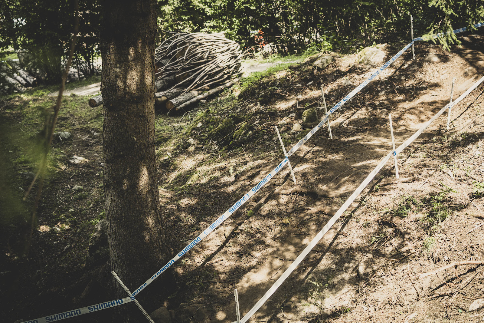 Lots of loam that will soon be ridden off exposing treacherous roots beneath.