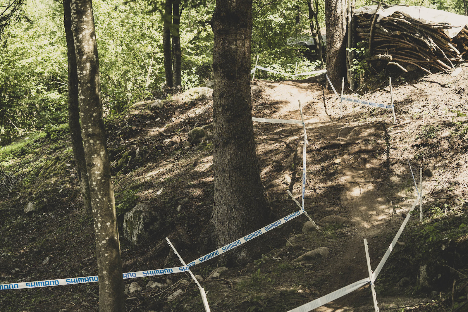 Little descents end in loamy pits.