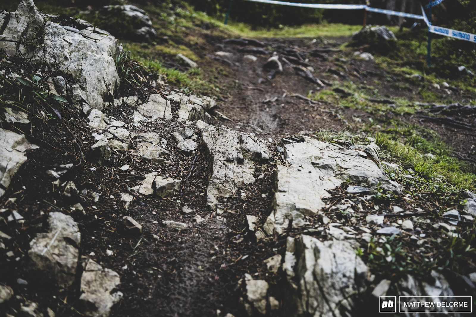 Rocks roots and loam. This course is X heaven.
