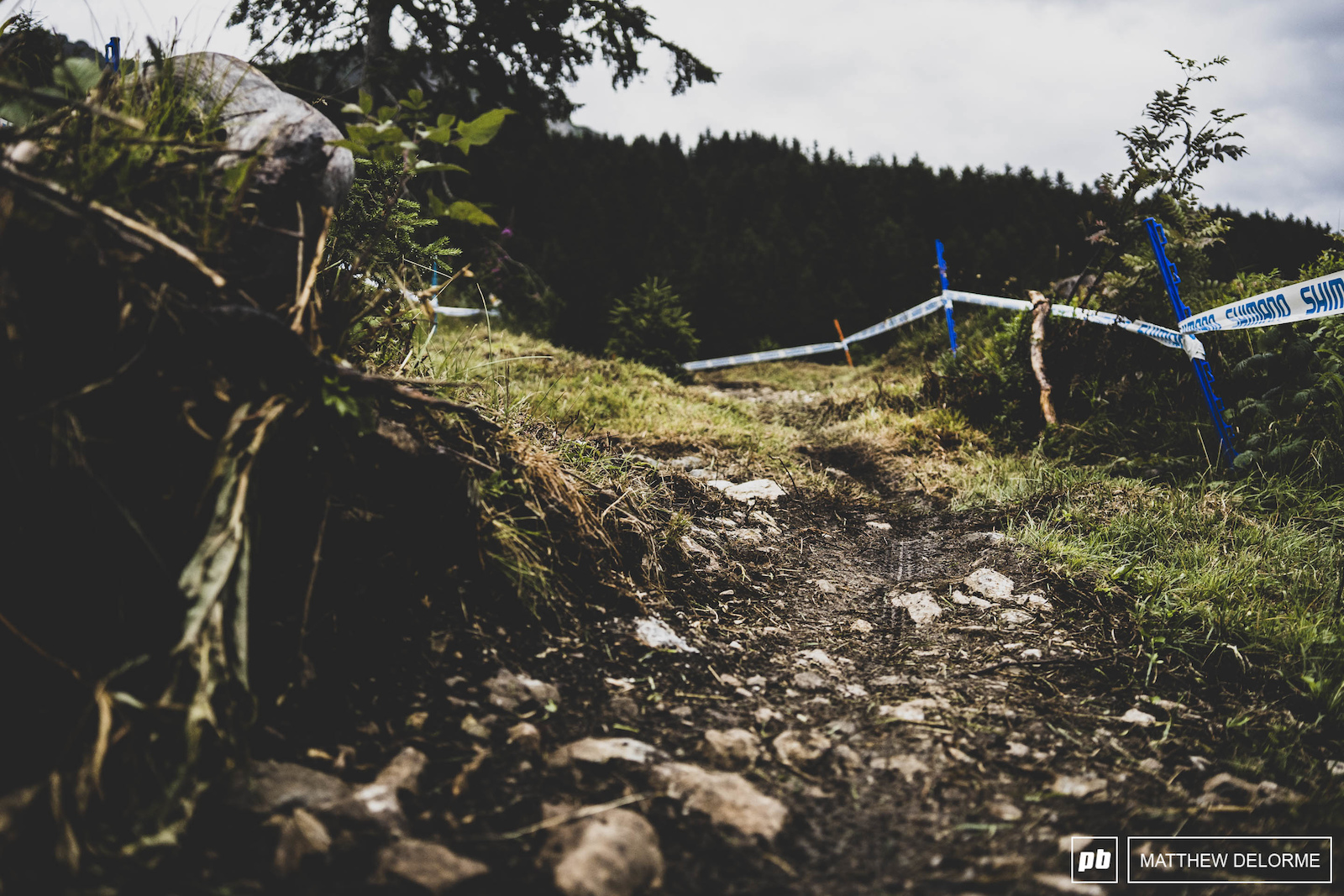 The sections of trail here just look fun to ride. I m not so sure I d want to race them though.