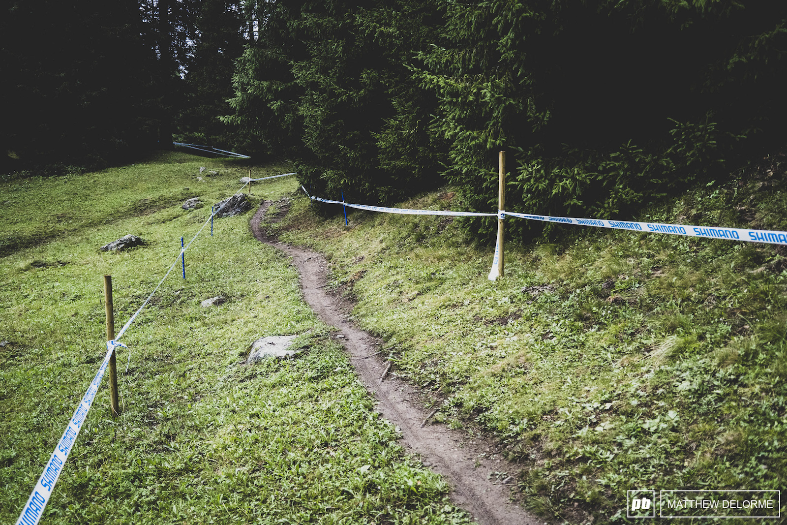 Thin Ribbons of single track with room to pass in the grass. There are cow pies though.