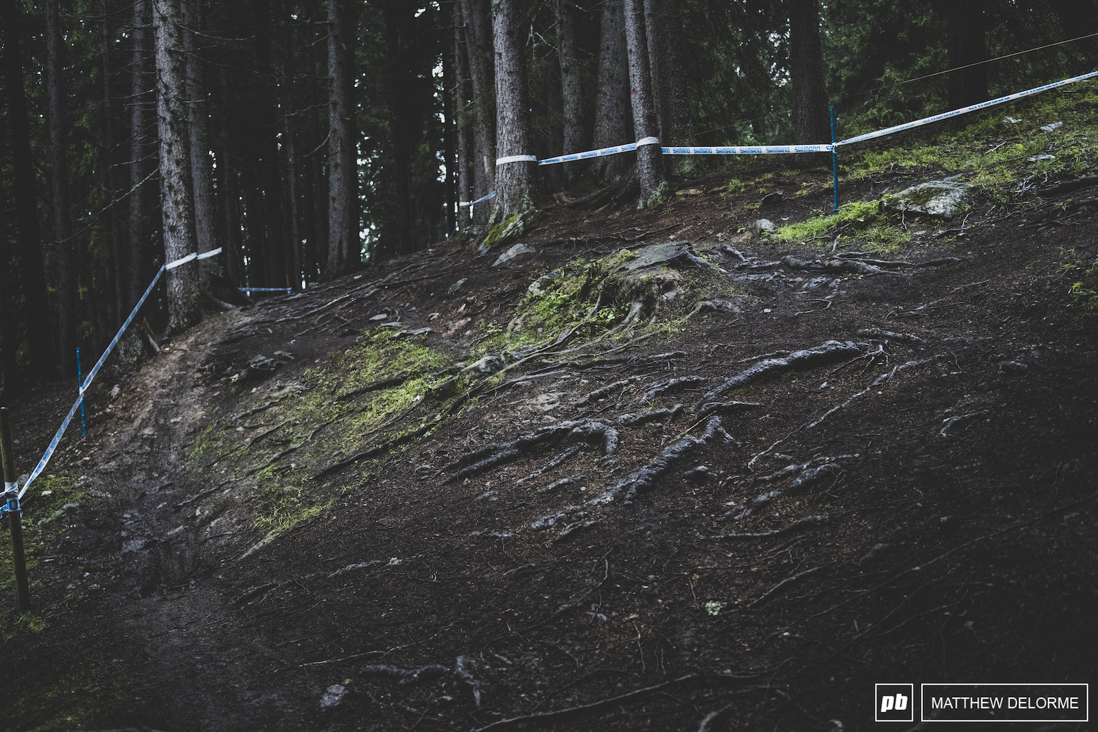 This is not a descent. It is the climb that Kate Courtney made her move and got away from Annika Langvad at Worlds last year.