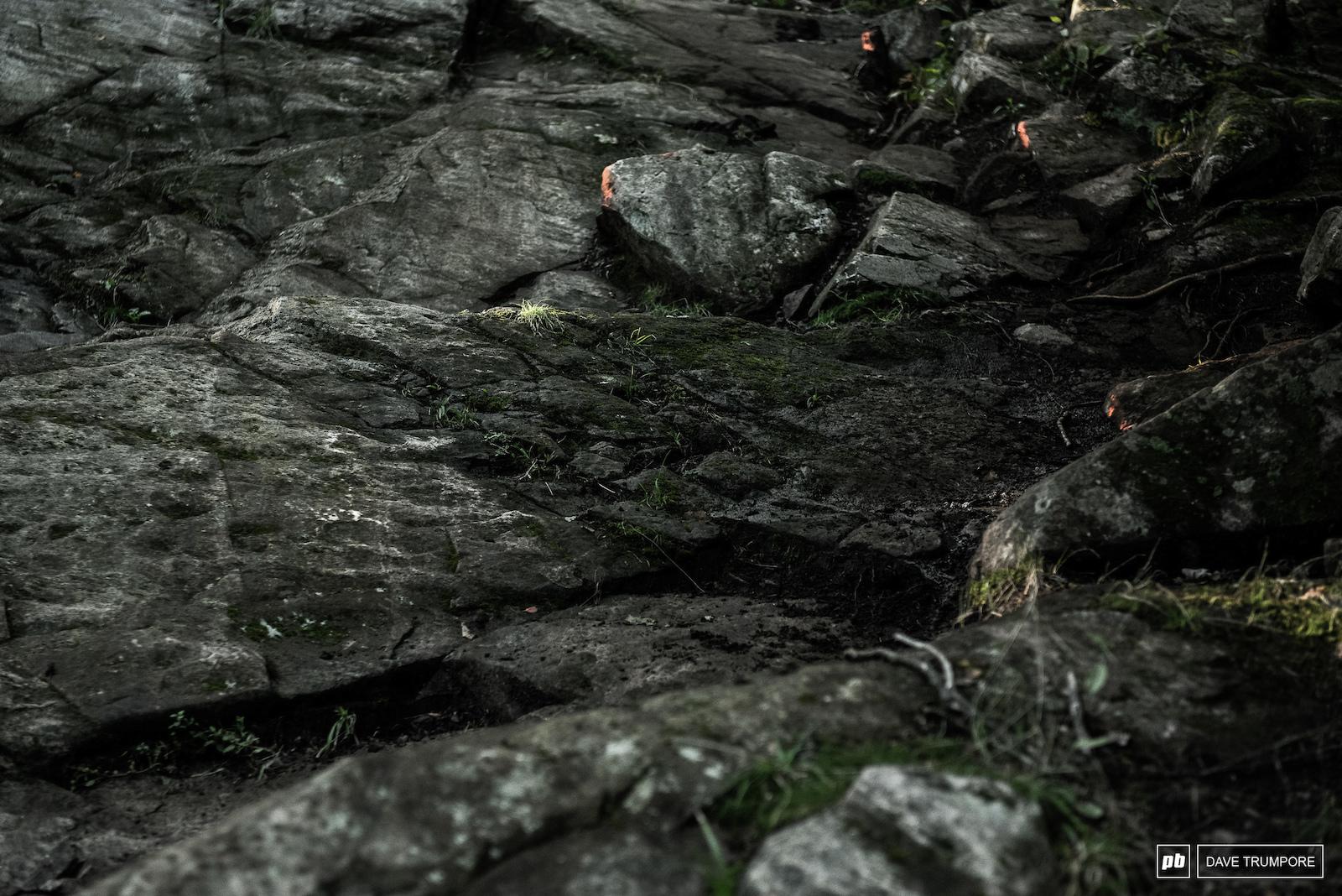 MSA rocks