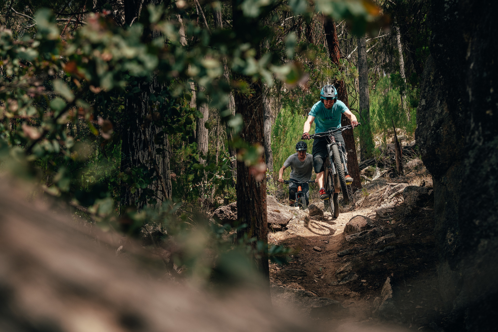 Beechworth offers trails of all different kinds easy flow to gnarly rock gardens.