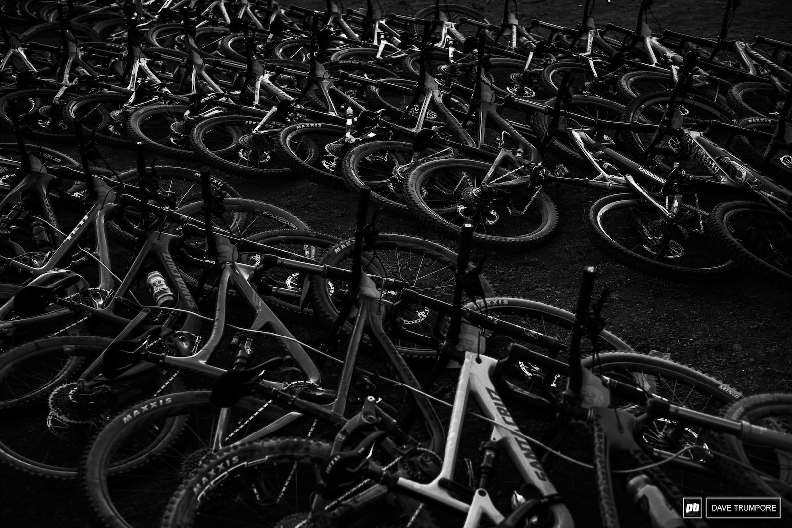 Bikes lined up in camp awaiting the first day of racing