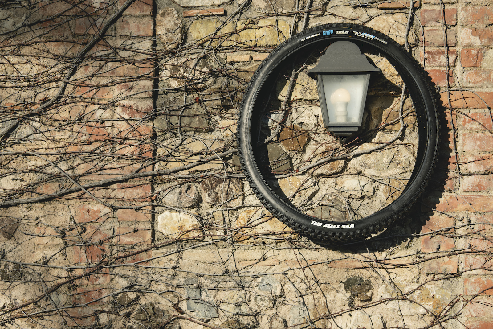 Bike Connection Agency Winter 2020 Vee Tyre Co Photo Rupert Walker