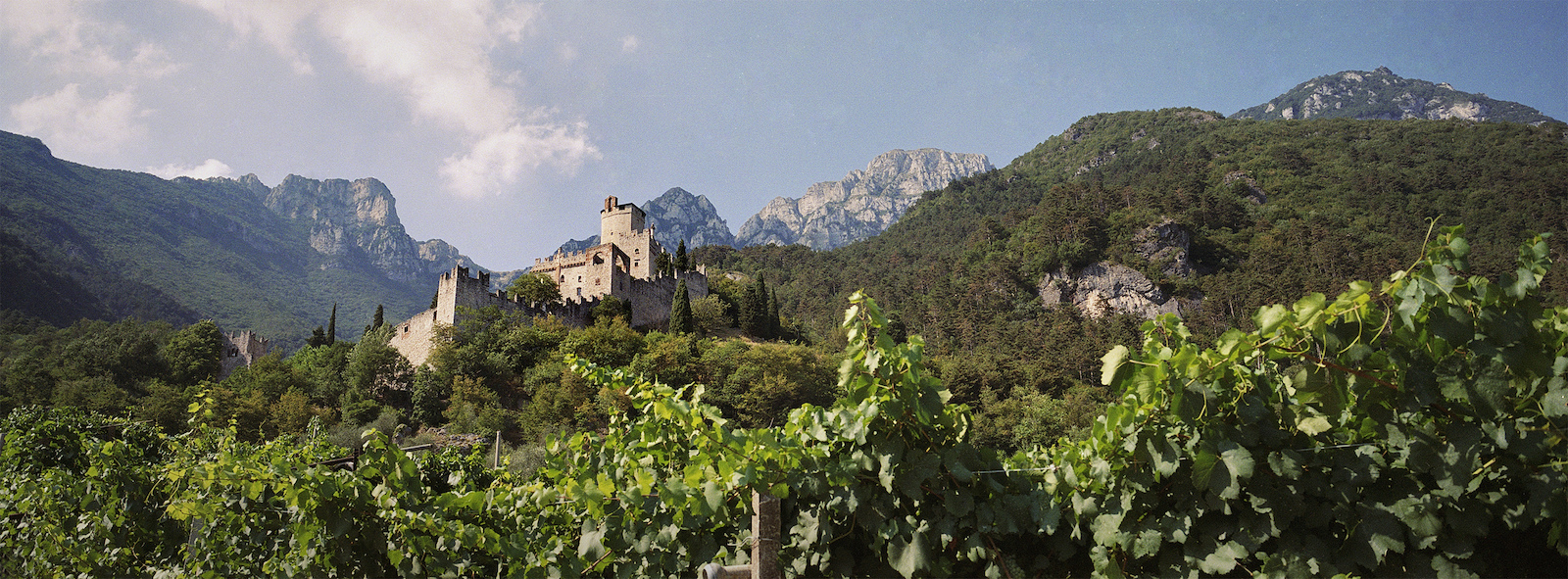 Avio is one of the many castles overlooking vineyards scattered across Italy s Trentino region.